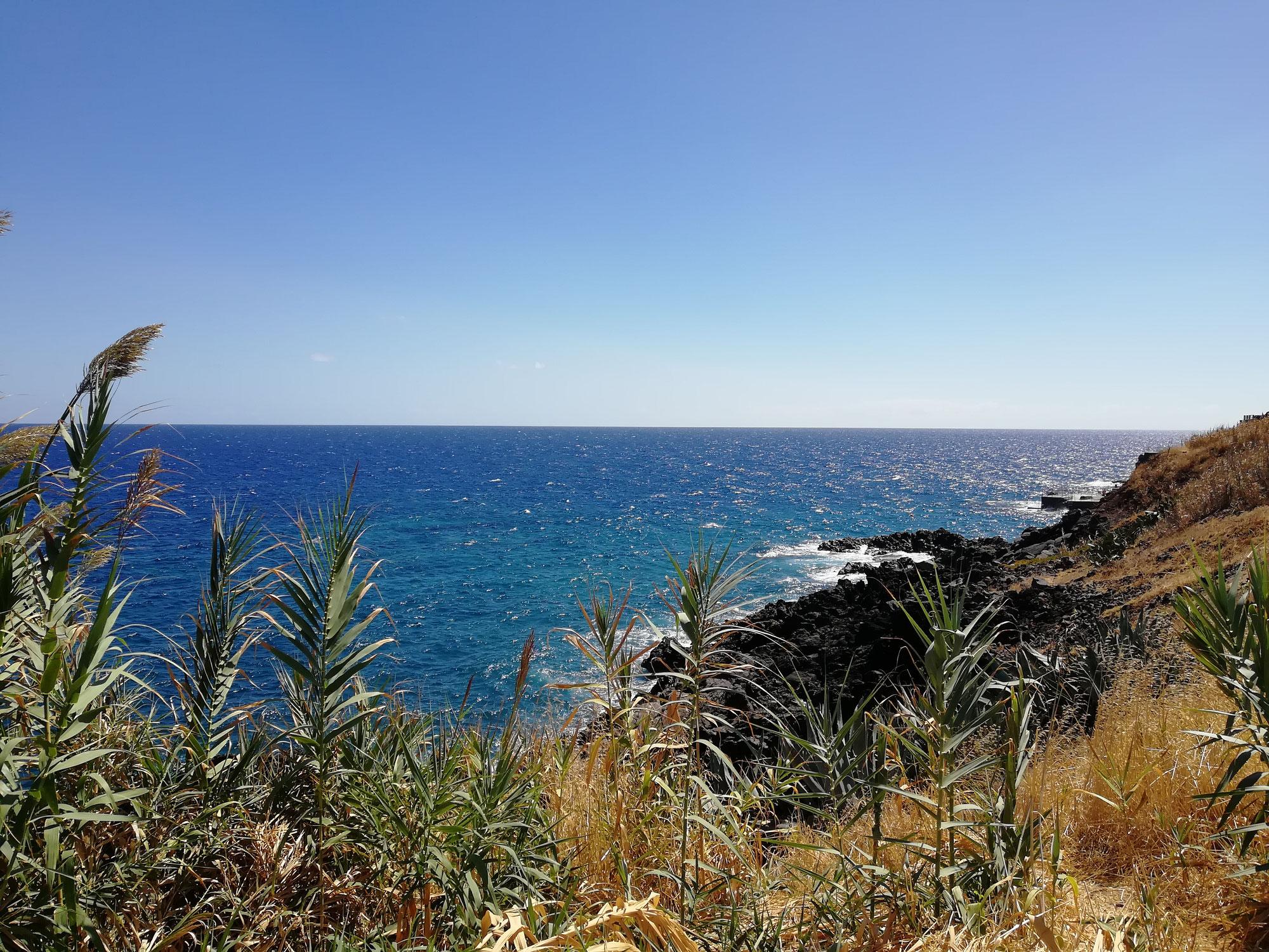 Madeira, die grüne Insel im atlantischen Ozean