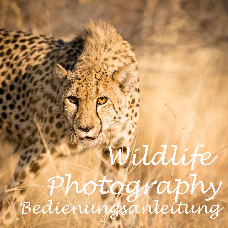 Wildlife photography - der versuch einer Bedienungsanleitung...