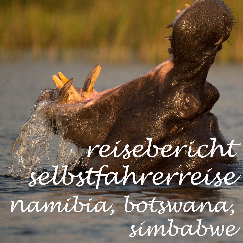 reisebericht teil ii, eine selbsfahrereise durch namibia, botswana und simbabwe - 21 tage und 4.000 km
