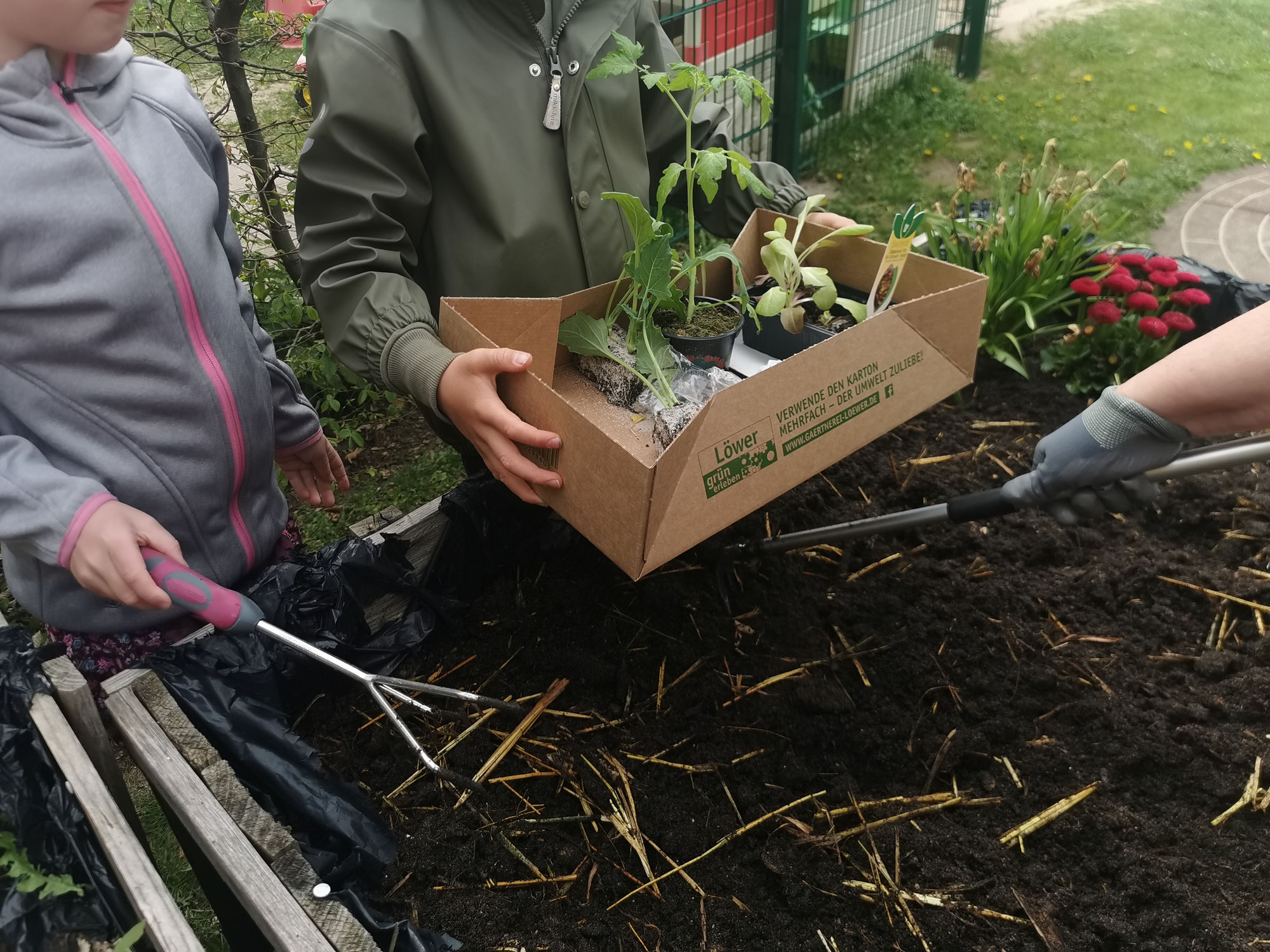 GartenAktion mit Unterstützung der Gärtnerei Löwer