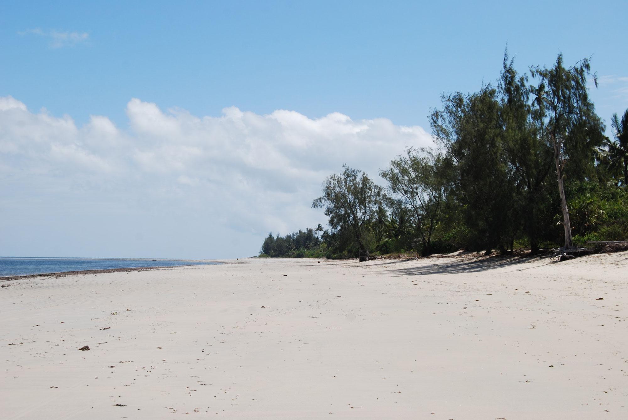 Ushongo Beach - traumhafte und menschenleere Strände an der Nordküste Tansanias