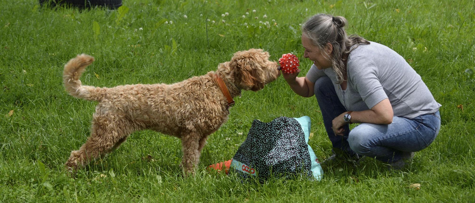 """Seminar """"Du bist mir wichtig: bindung in der Mensch-Hund-Beziehung"""" mit Bettina Mutschler (D)"""