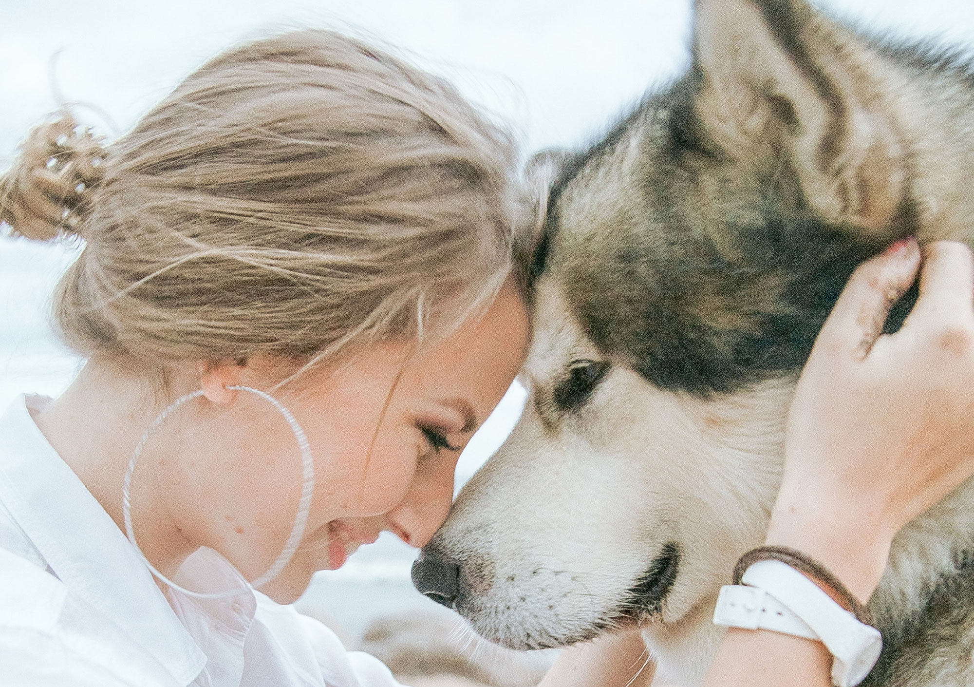 """Workshop """"Hundemassage für den Alltag"""" am 15. Mai 2021"""
