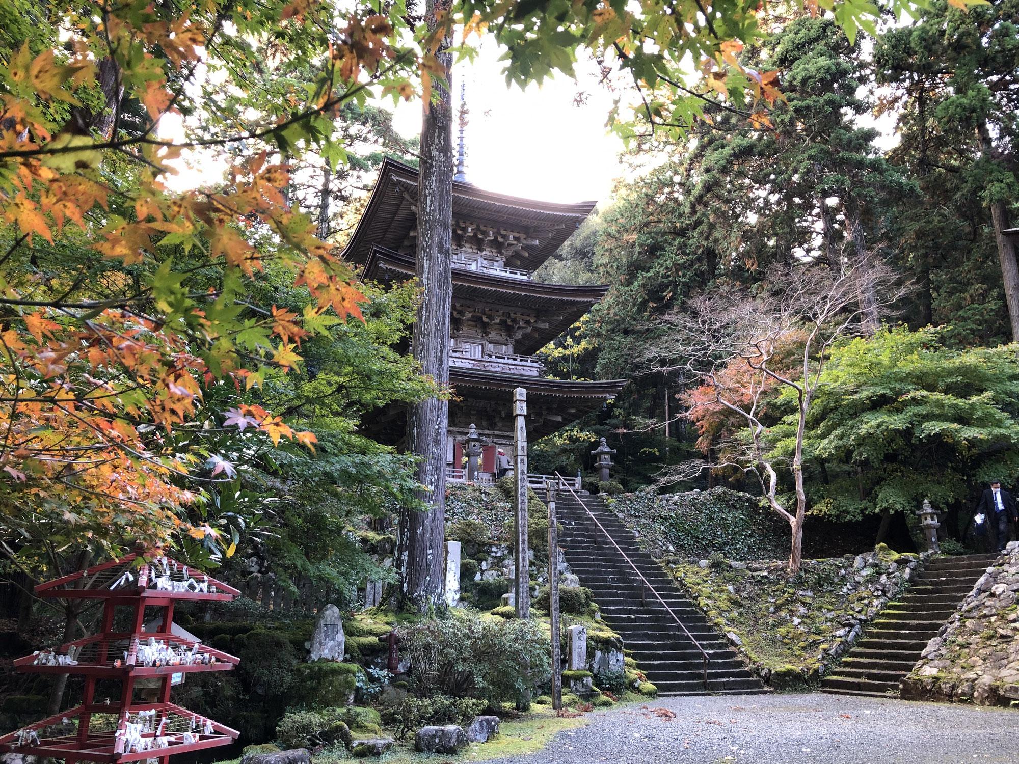 【完売しました】2021.10.9 「おてらでらいぶ」を国宝・明通寺で開催いたします