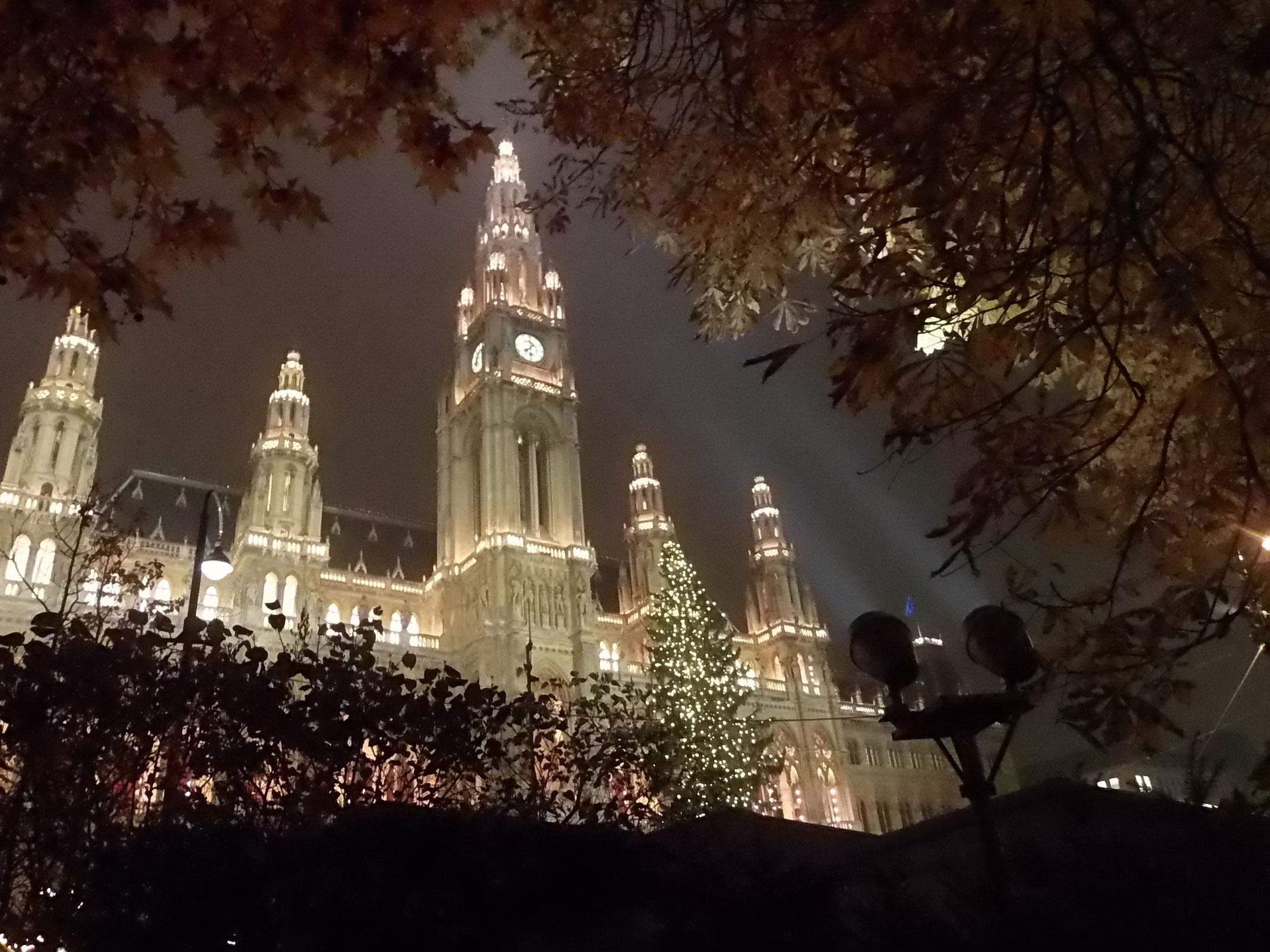 La tradizione del'albero di Natale a Vienna