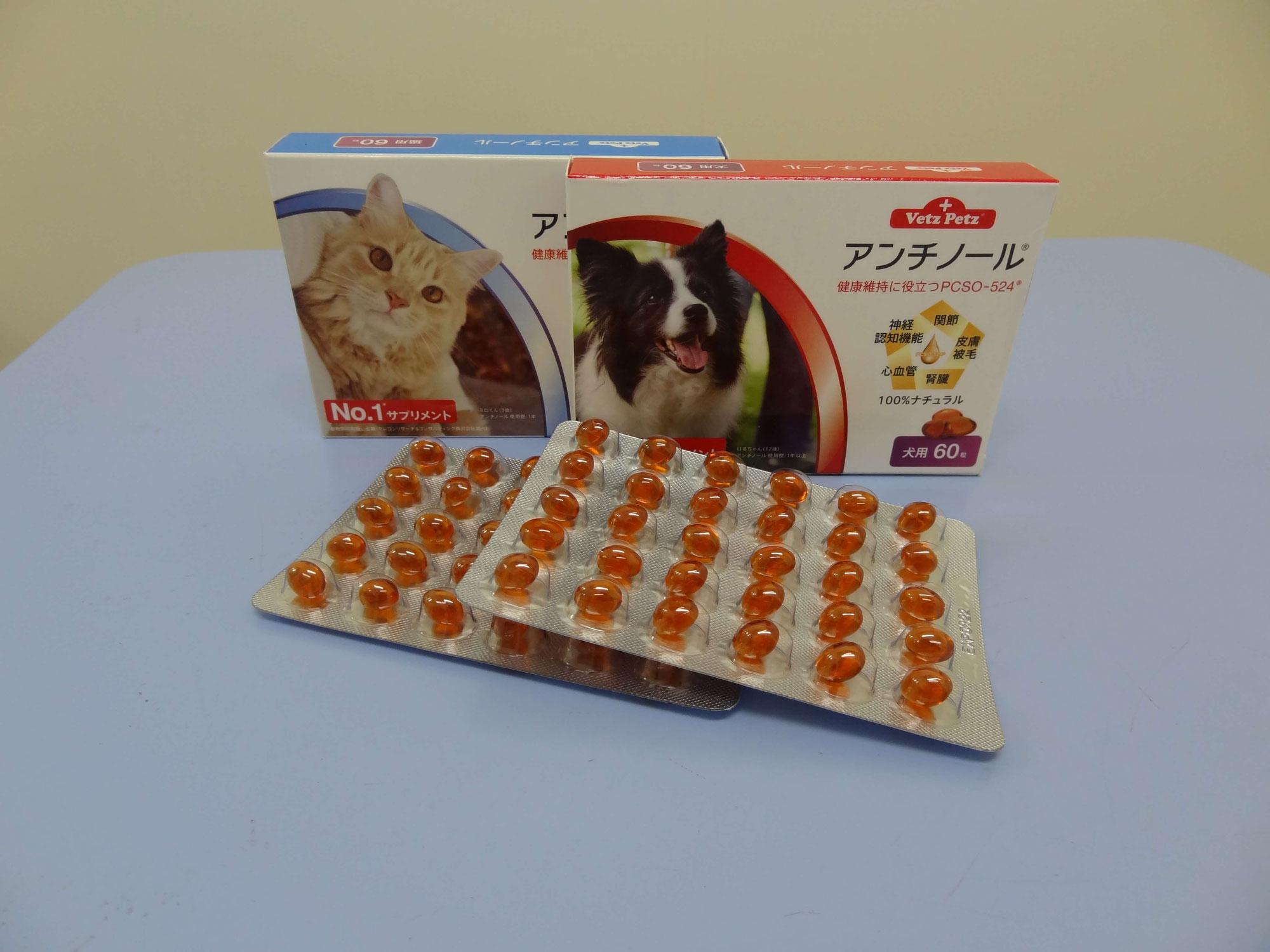 シニア期の犬猫に気をつけたい6つの症状【おすすめのサプリメント】