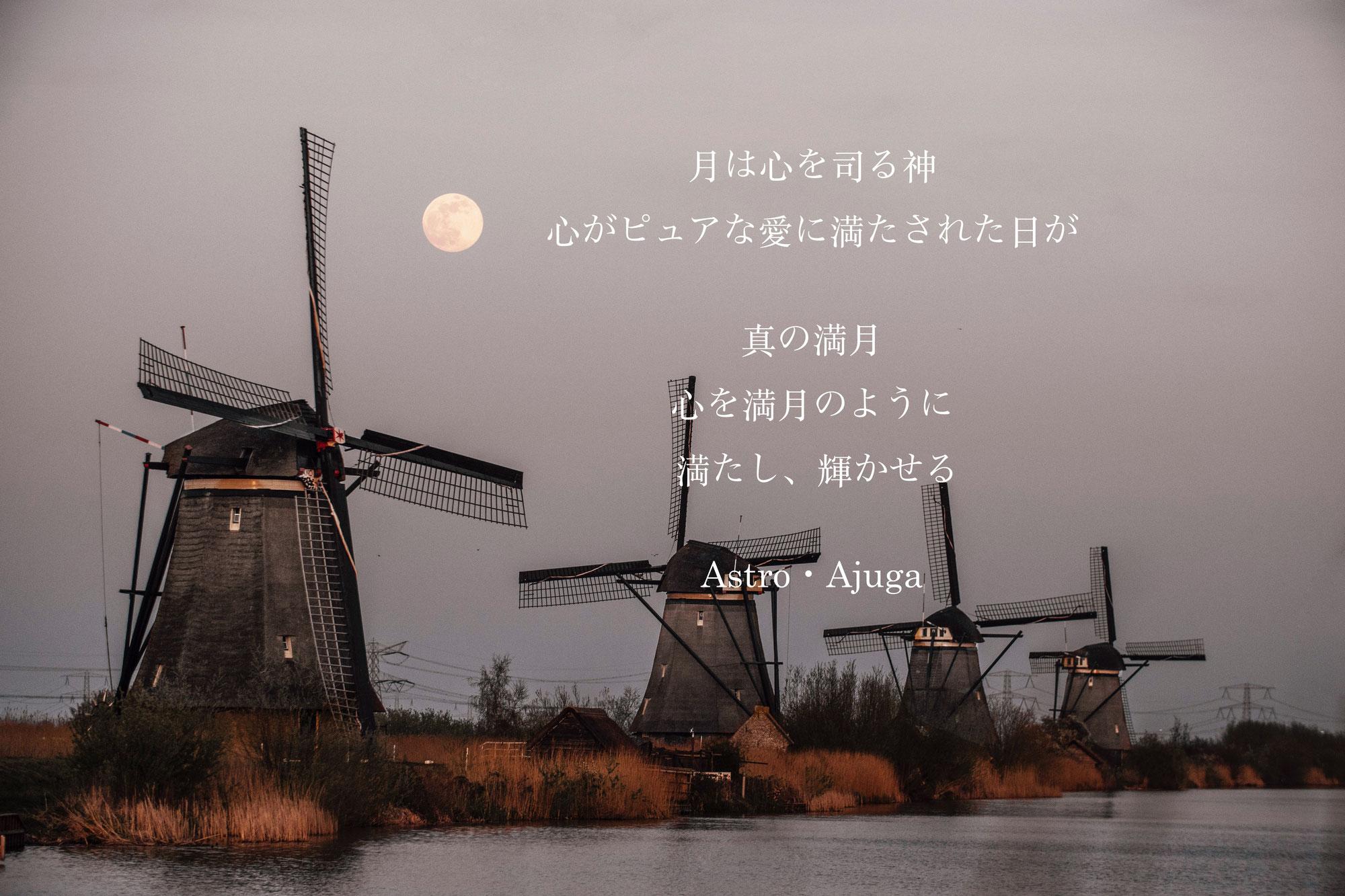 『天秤座満月』3月29日「アジュガの星のコトバ」