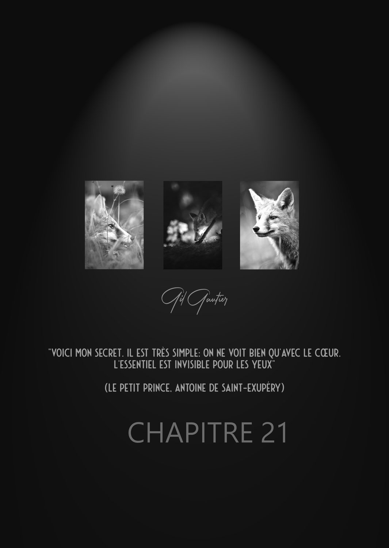 """EXPOSITION """"CHAPITRE 21"""" 2021"""