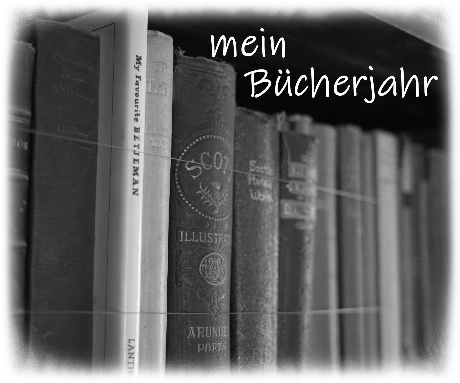 mein Bücherjahr