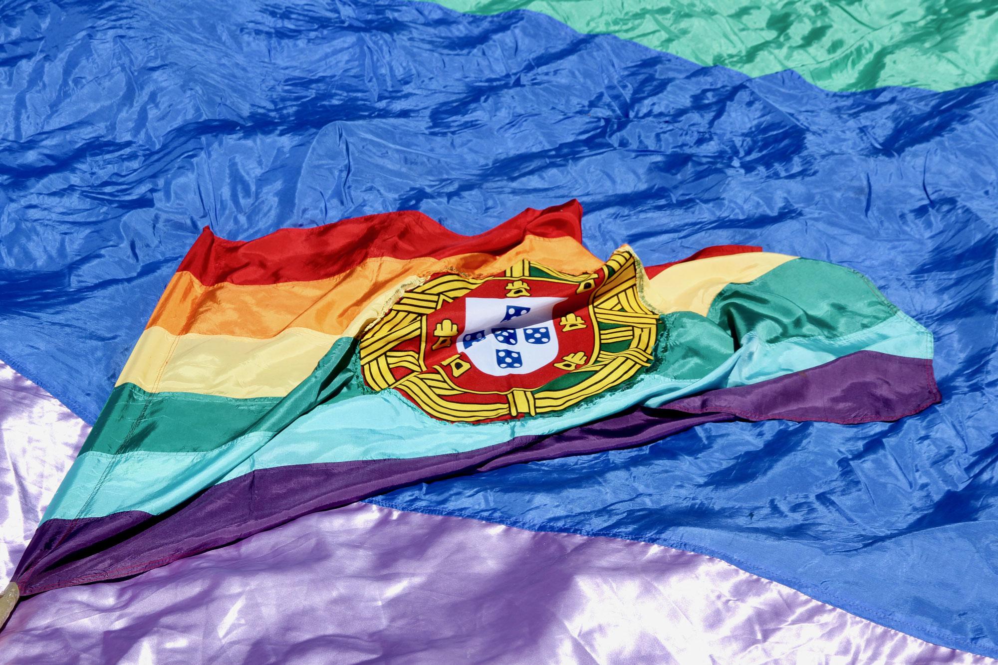 Dia Internacional contra a Homofobia, Transfobia e Bifobia