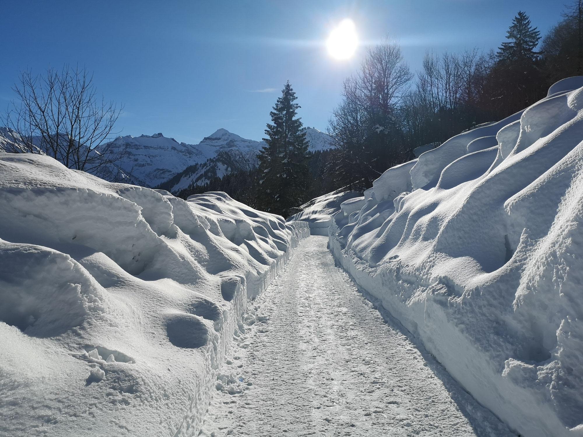 Wintergedanken