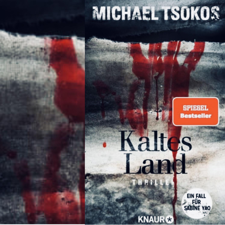 Michael Tsokos: Kaltes Land (Ein Fall für Sabine Yao)
