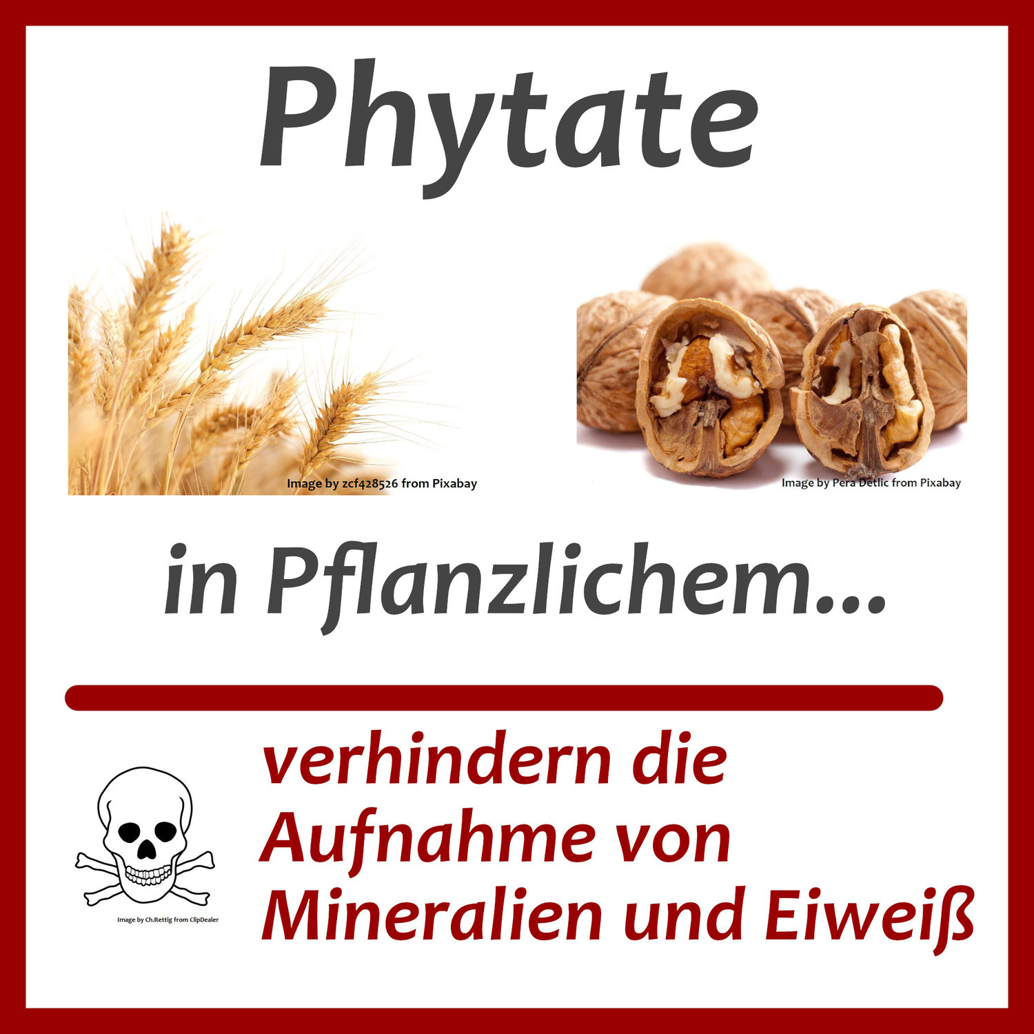 Phytate