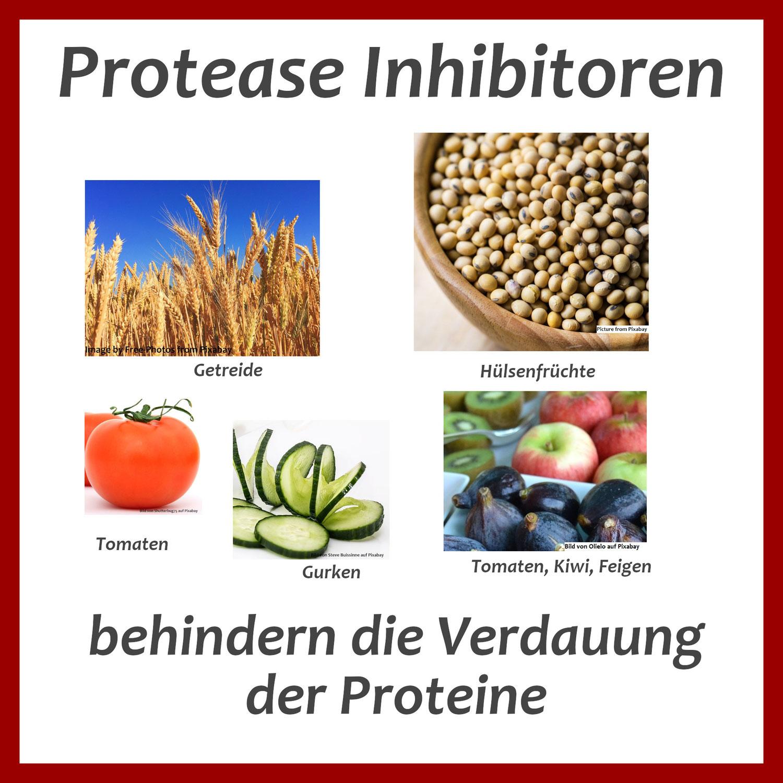Protease Inhibitoren