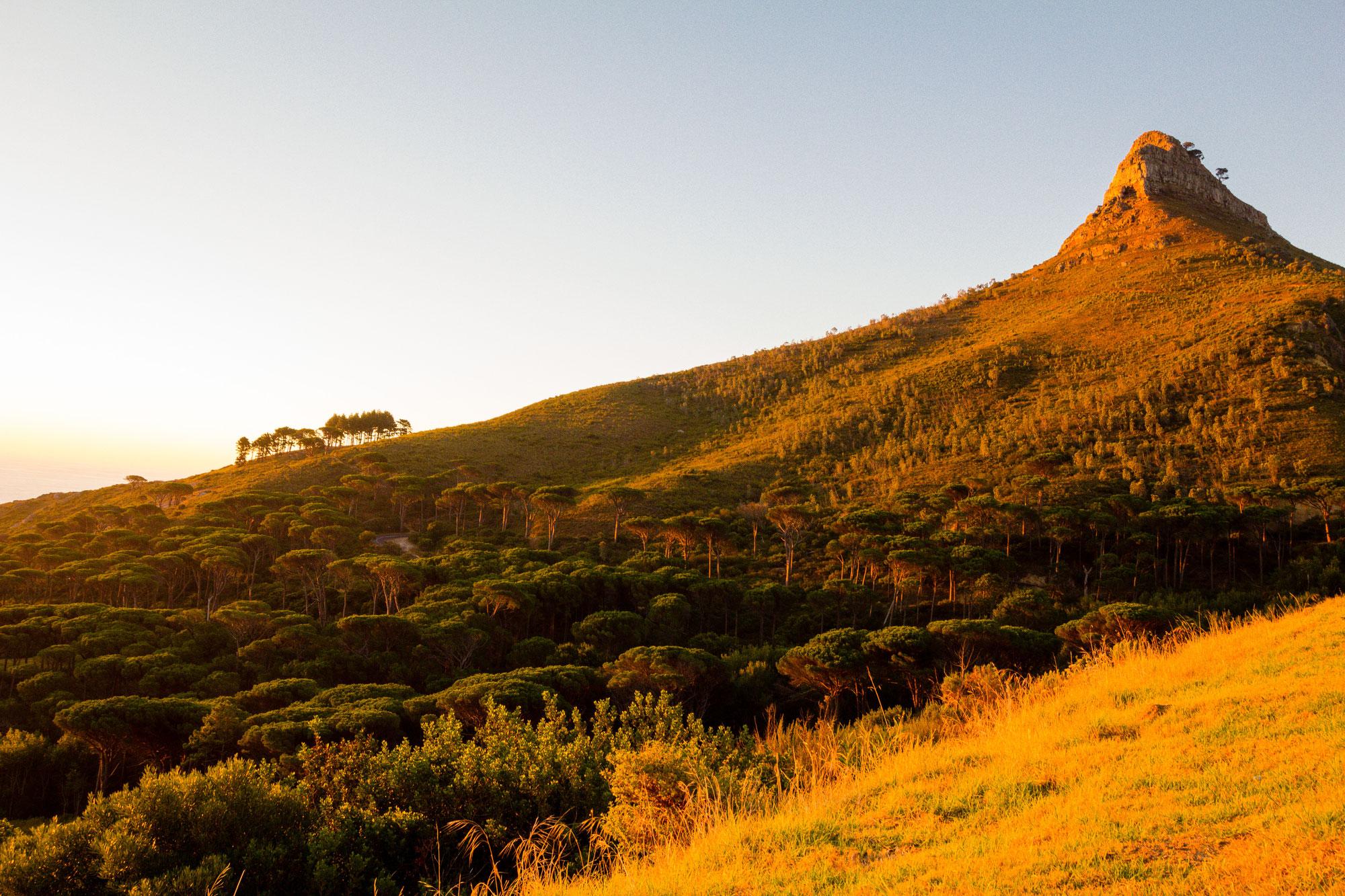 Cape Town's best hike: Lion's Head