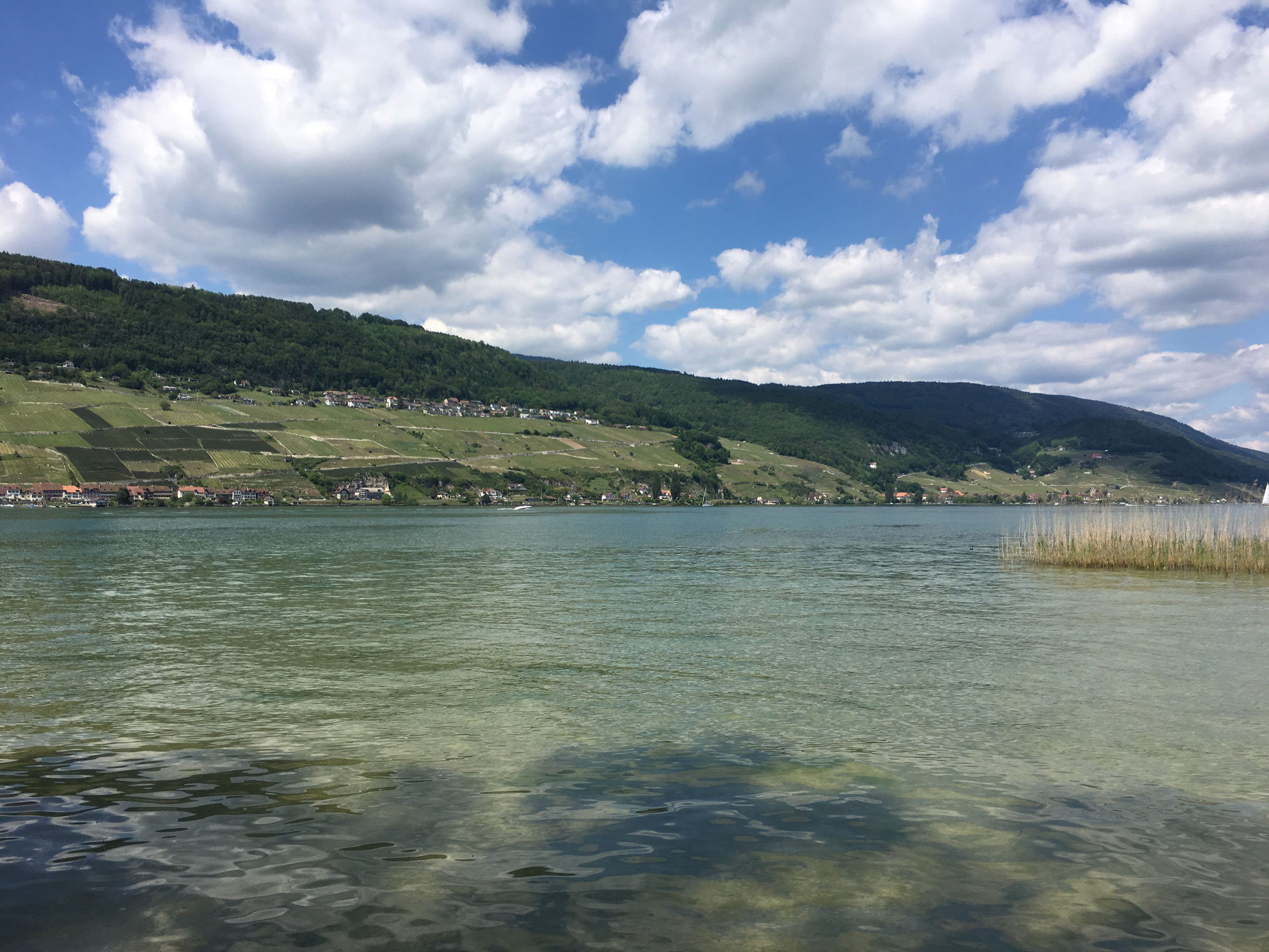 Bielersee zum Dritten - Camping Erlach
