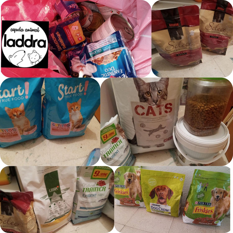 Ayuda para diferentes alimentadoras