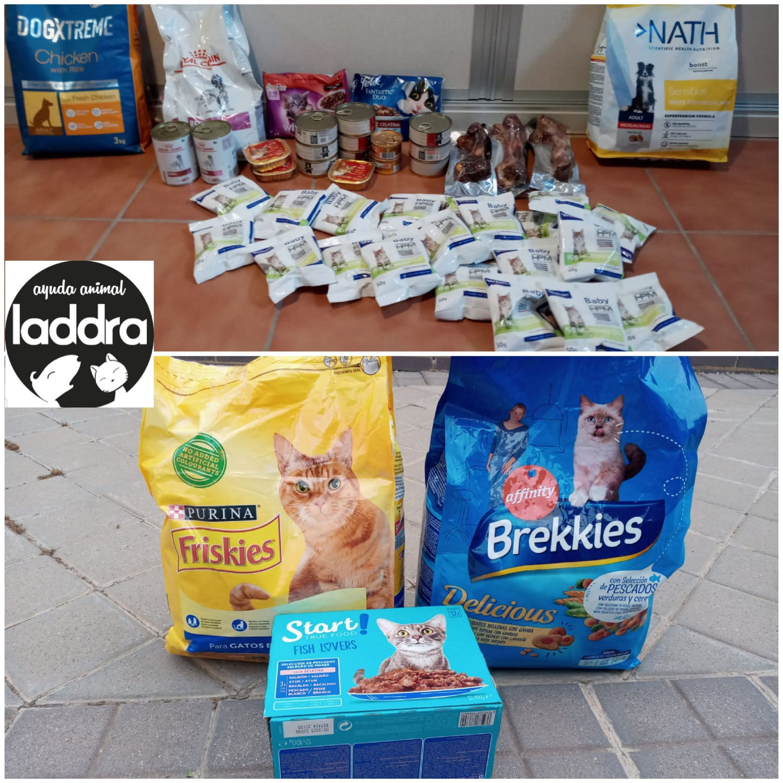 Donación para alimentadoras de Toledo