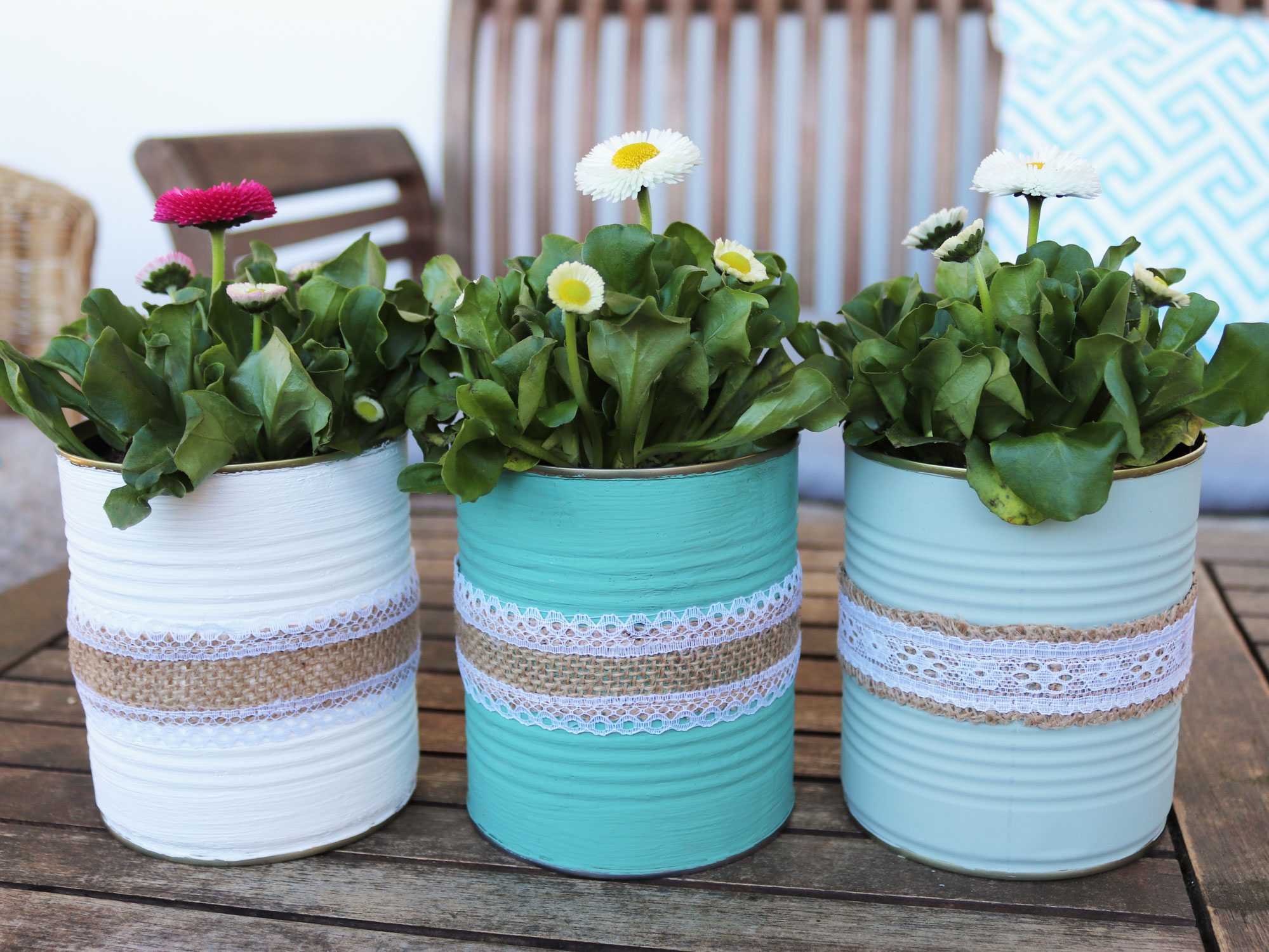 DIY Blumentöpfe aus Konservendosen