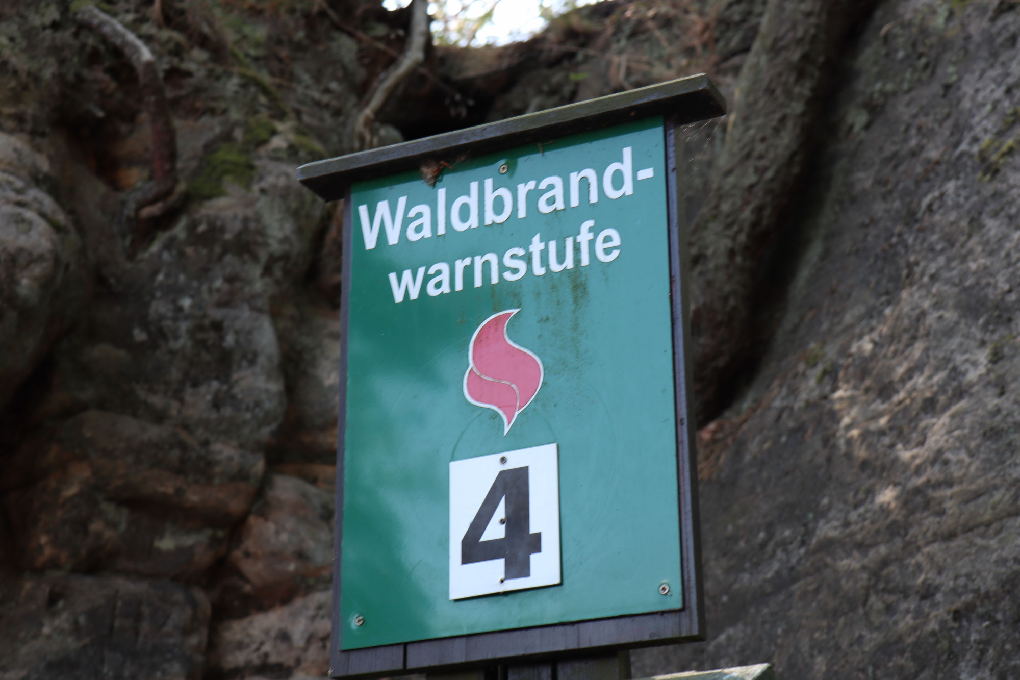 Erhöhte Waldbrandgefahr in Mannheims Wäldern