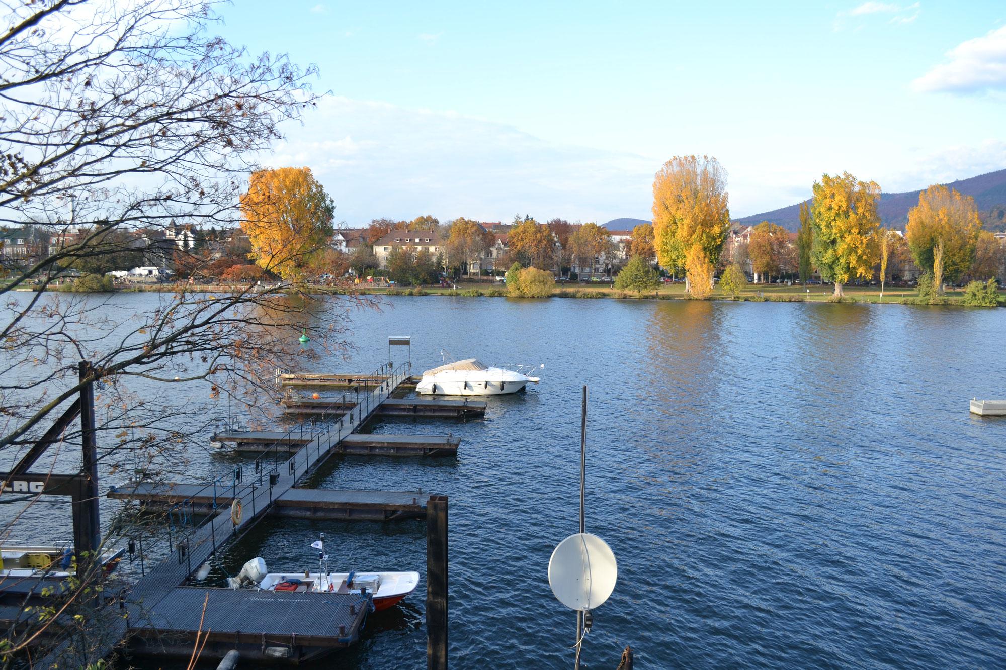 Heidelberg: Freizeit an der frischen Luft - In Corona-Zeiten neue Orte entdecken