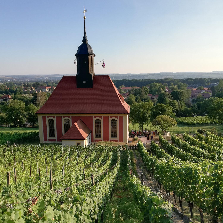 Vorschau: Abendtour zum Weinbauern - ausgebucht
