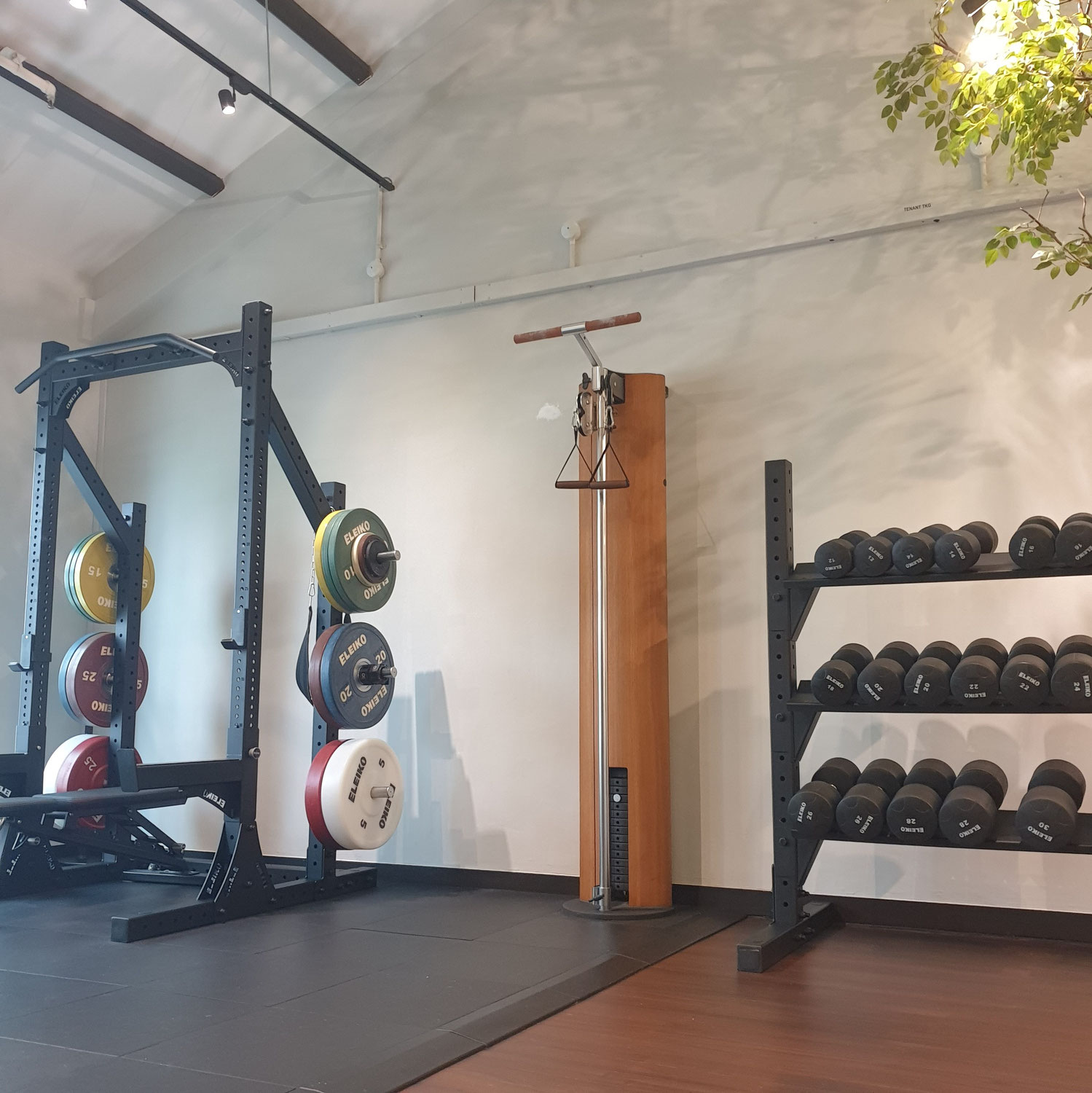 Most Gym Routines Are Wrong and What You Should Be Doing Instead