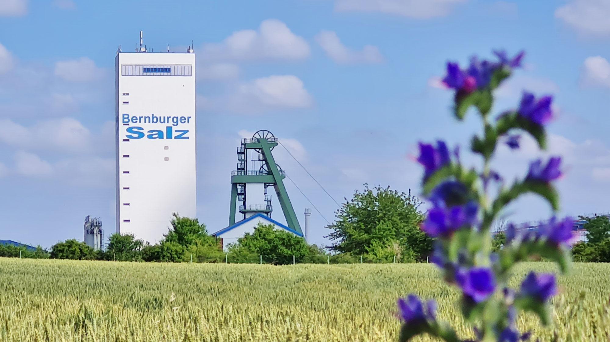 100 Jahre Bernburger Salz, noch Vorräte für viele Jahrzehnte