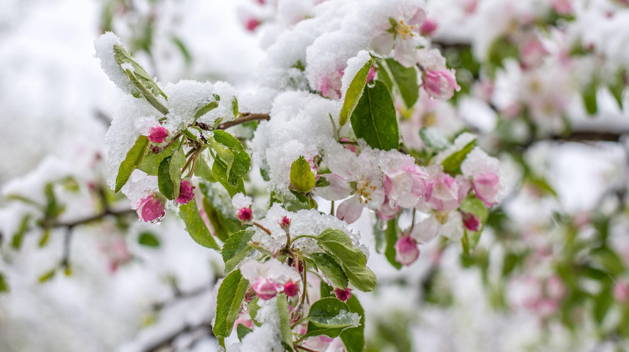 Aprilwetter und Kartenglück wechseln jeden Augenblick
