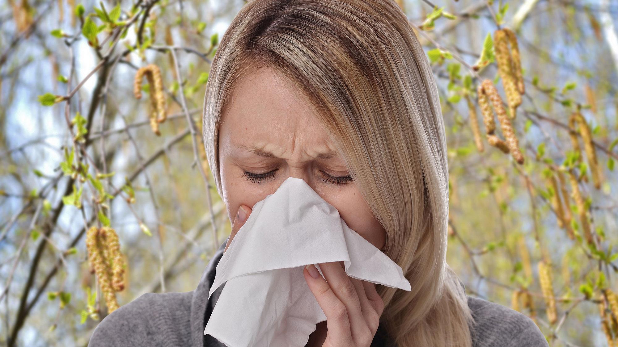 Für Pollenallergiker beginnt schlimmste Zeit des Jahres