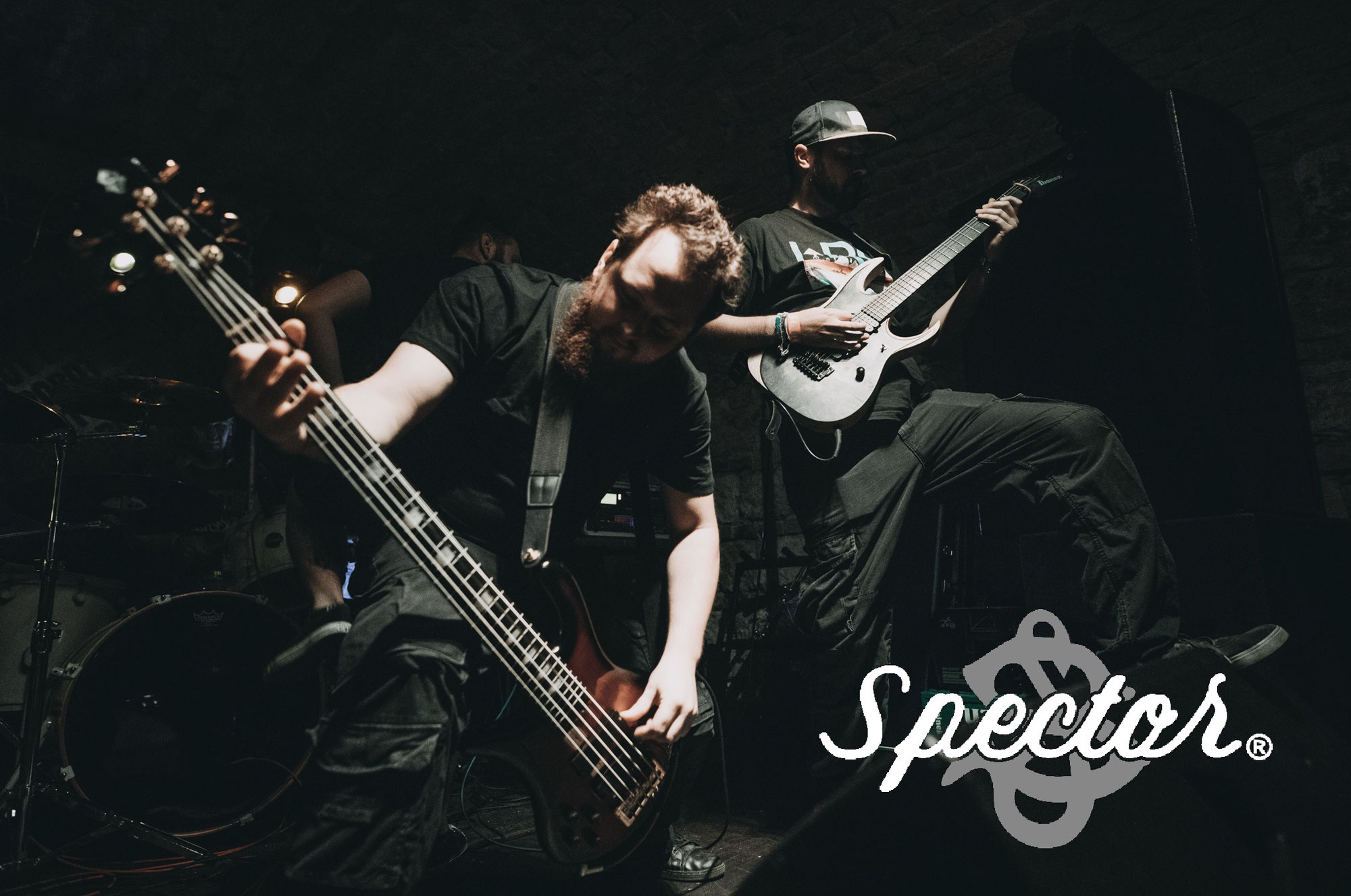 Lukas Rappitsch officially endorsed by Spector Basses