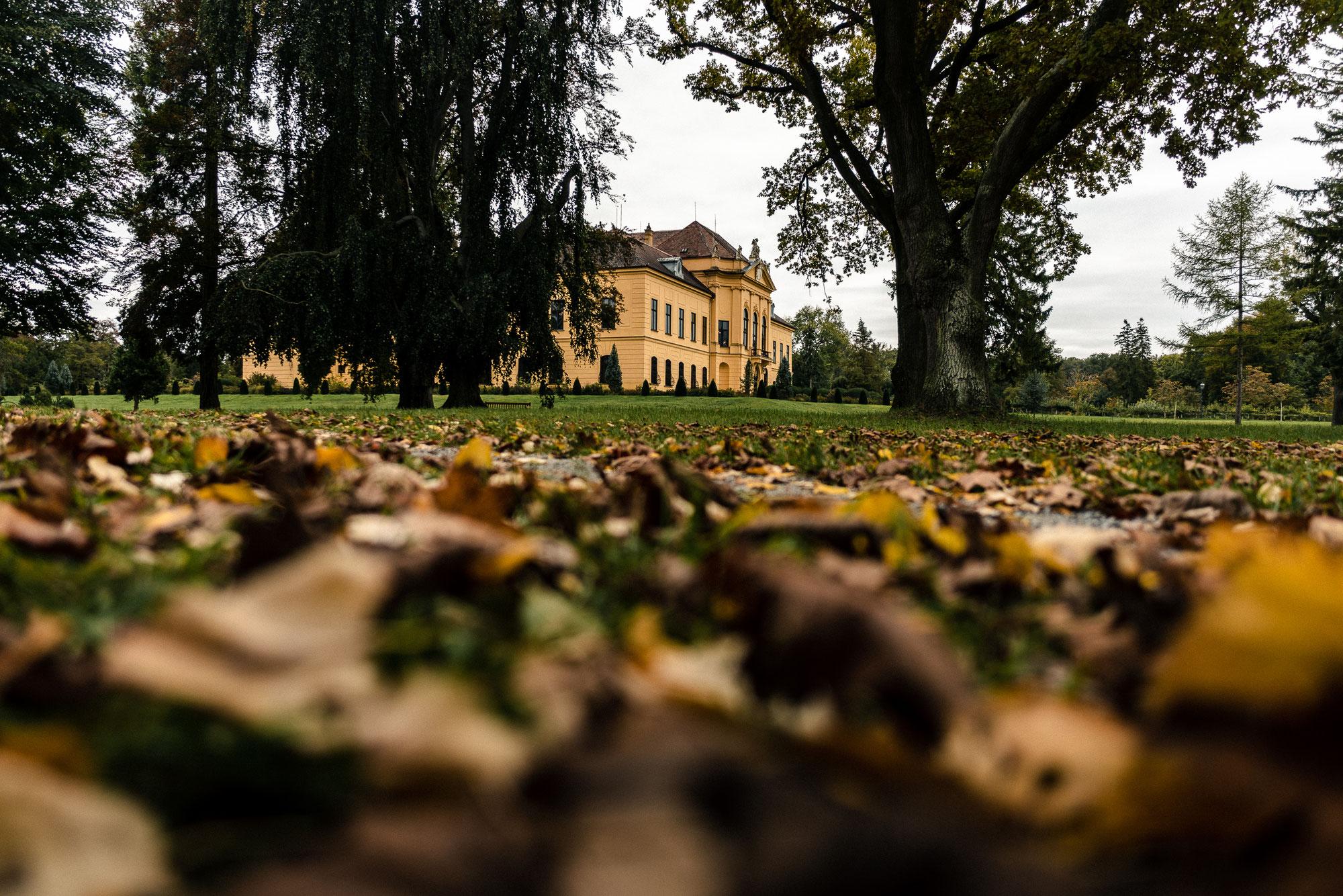 Fotowalk beim Schloss Eckartsau - Kreative Fotowerkstatt Marchfeld