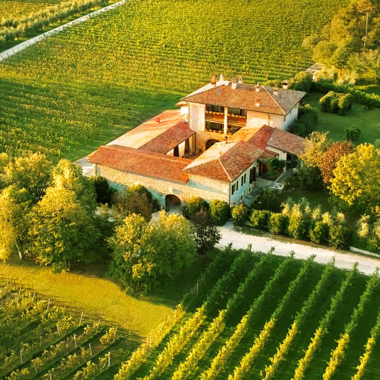 Nieuw wijnhuis CONTI THUN!