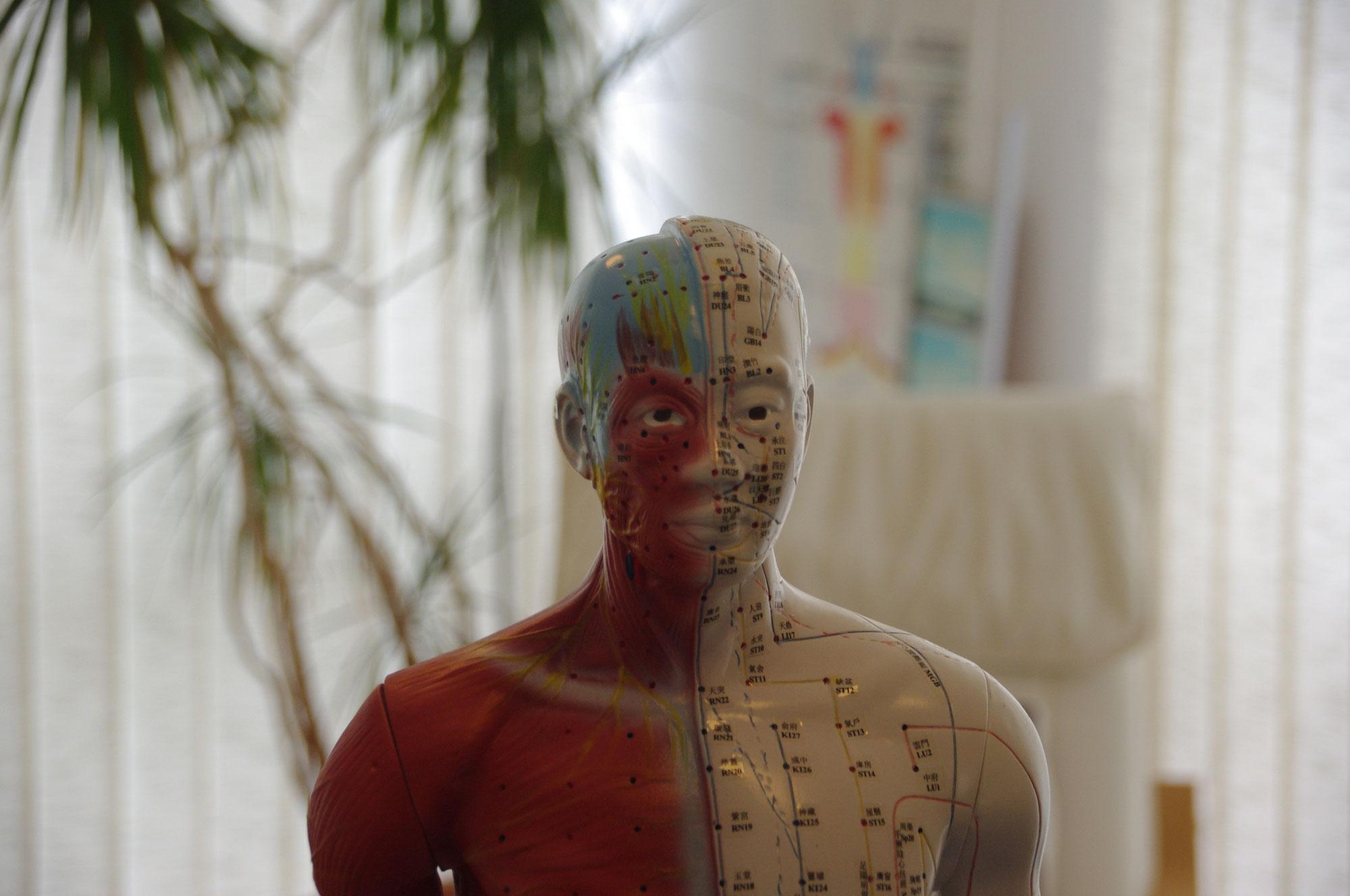 Detox mal anders – entgiften nach der TCM