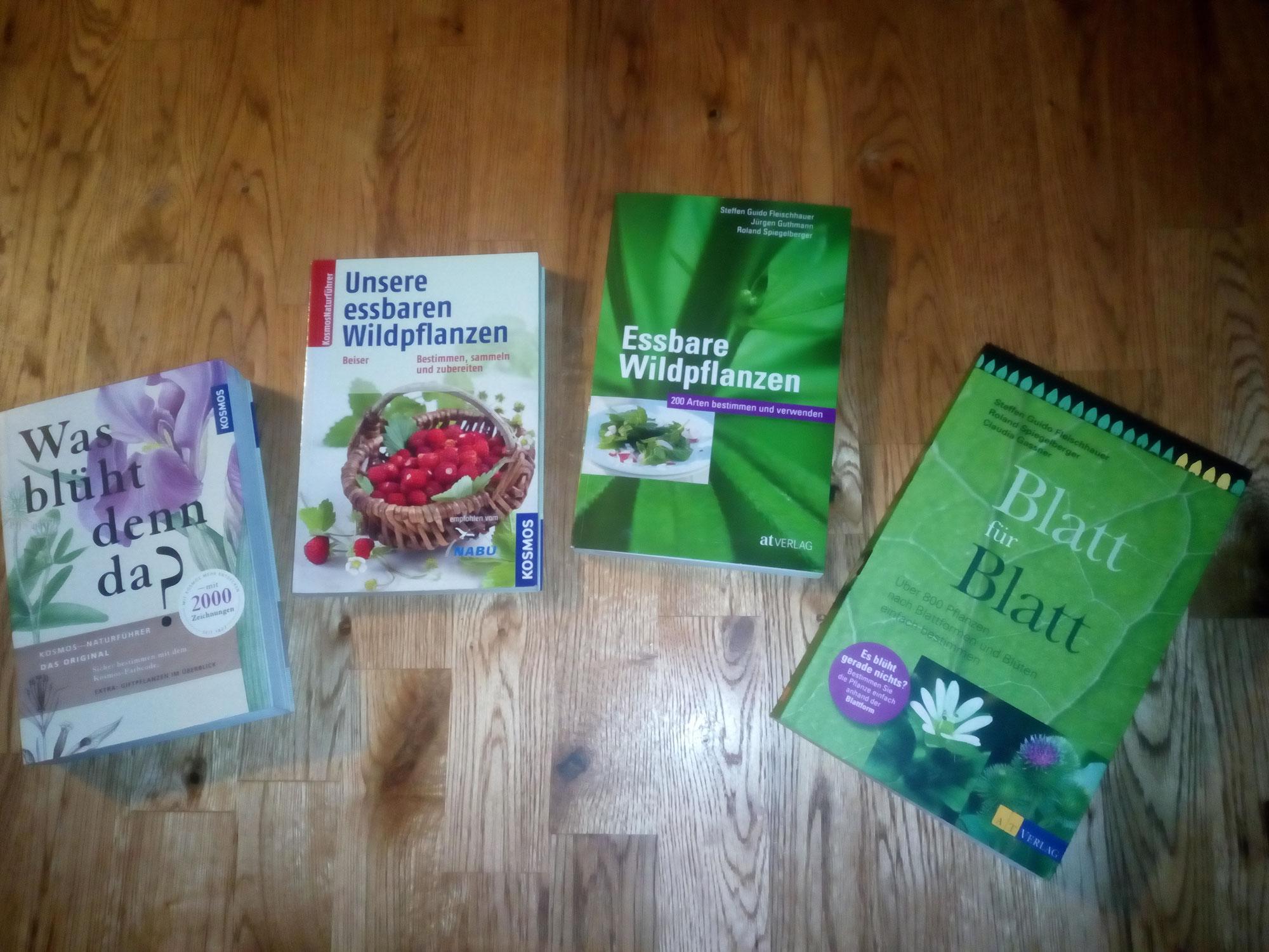 Buchtipps Bestimmung von (essbaren) Pflanzen