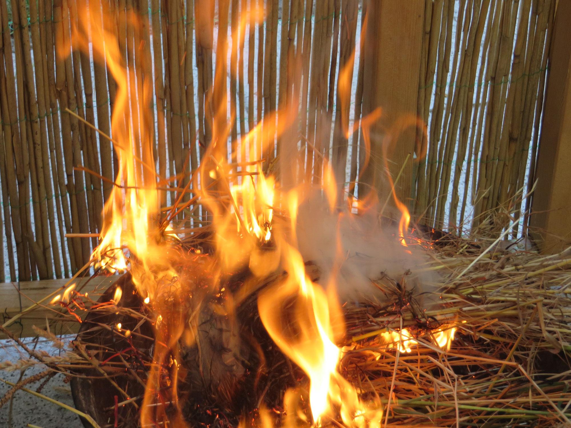 Lagerfeuerküche 09.05. SDW Mannheim findet nicht statt
