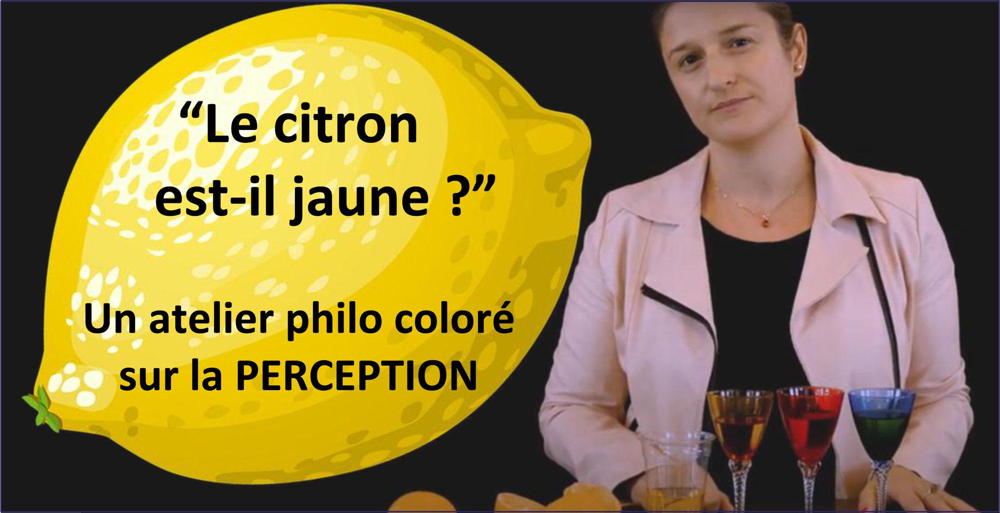 """""""LE CITRON EST-IL VRAIMENT JAUNE?"""" Un atelier philo guidé par un tuto vidéo avec Charlie RENARD (Philo Marmots)"""
