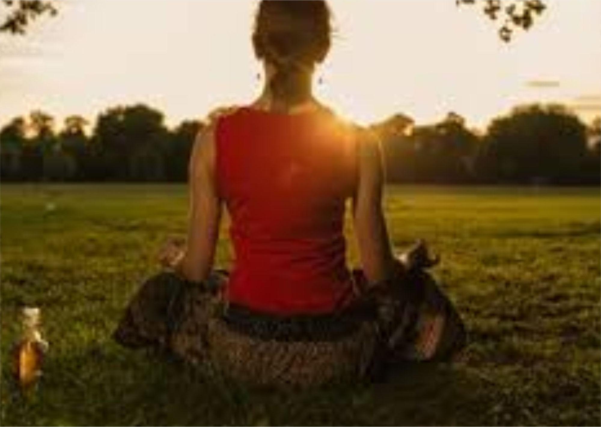 La Meditazione: strumento di radicamento per l'uomo e le piante