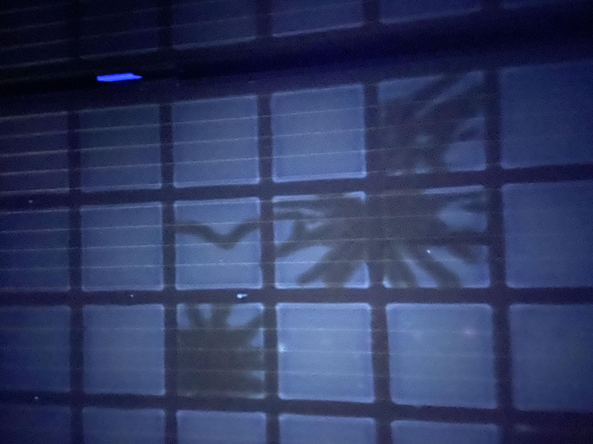 Wenn der Hagel Ihre Photovoltaikanlage beschädigt