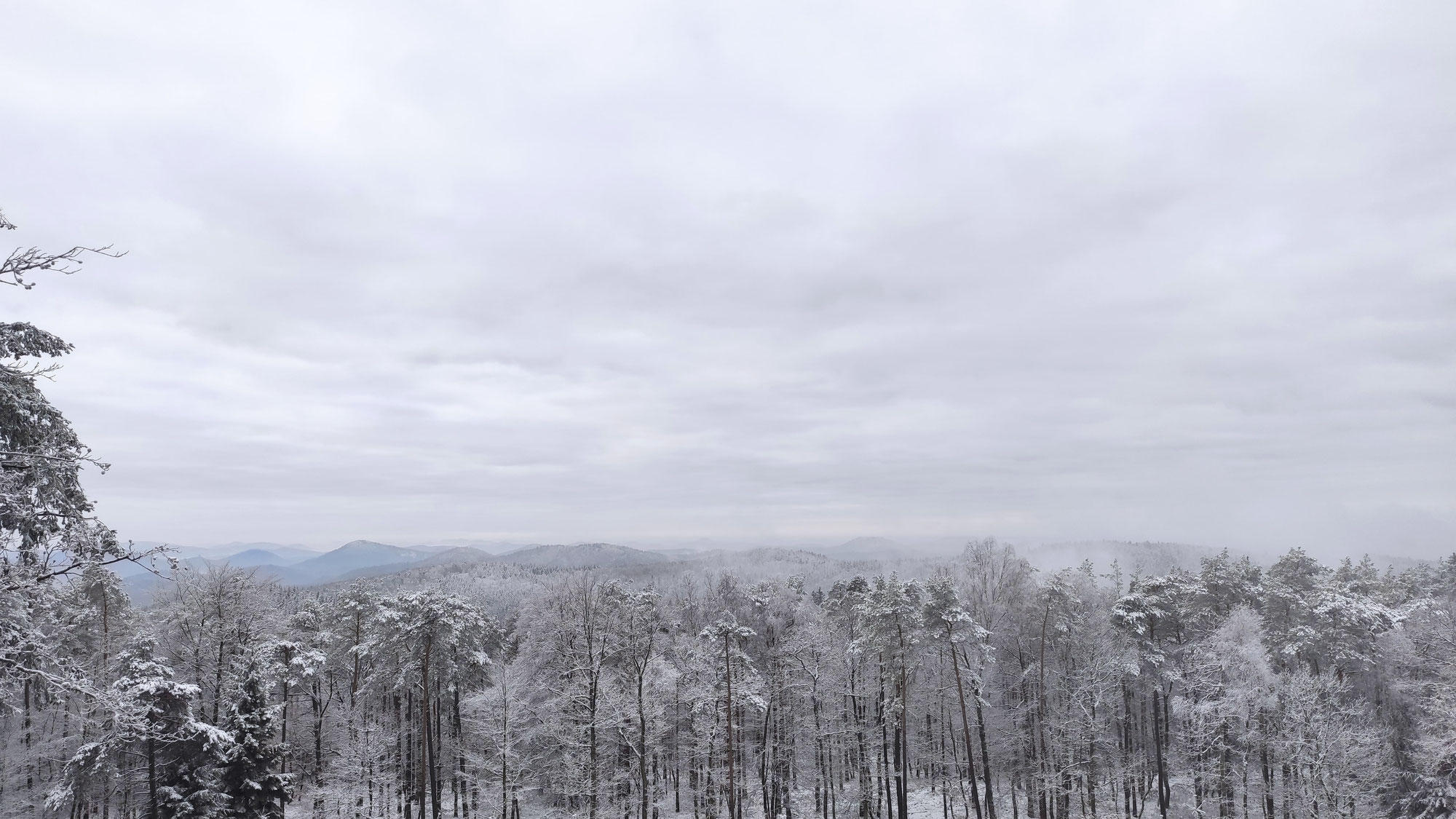 Schneewanderung zum Schänzelturm