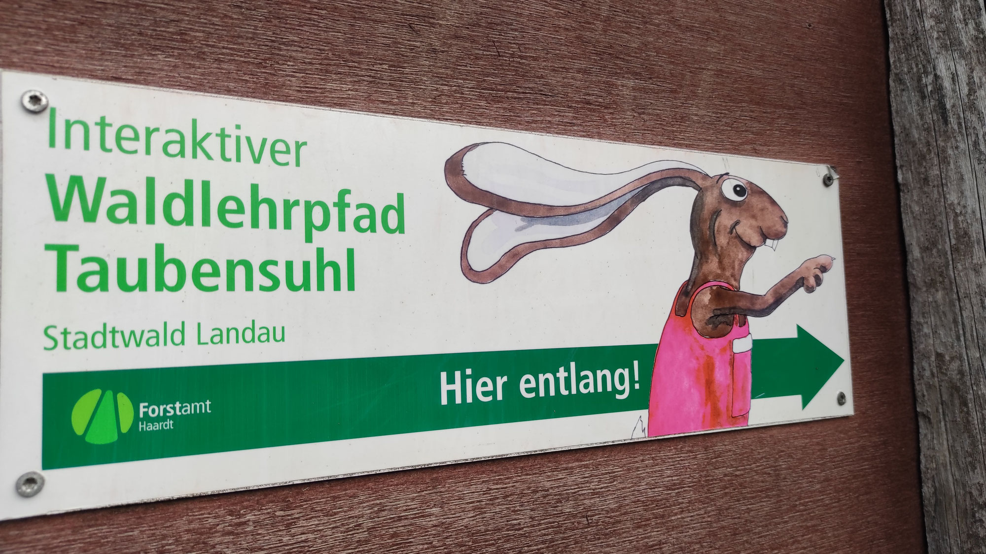 Waldlehrpfad Taubensuhl