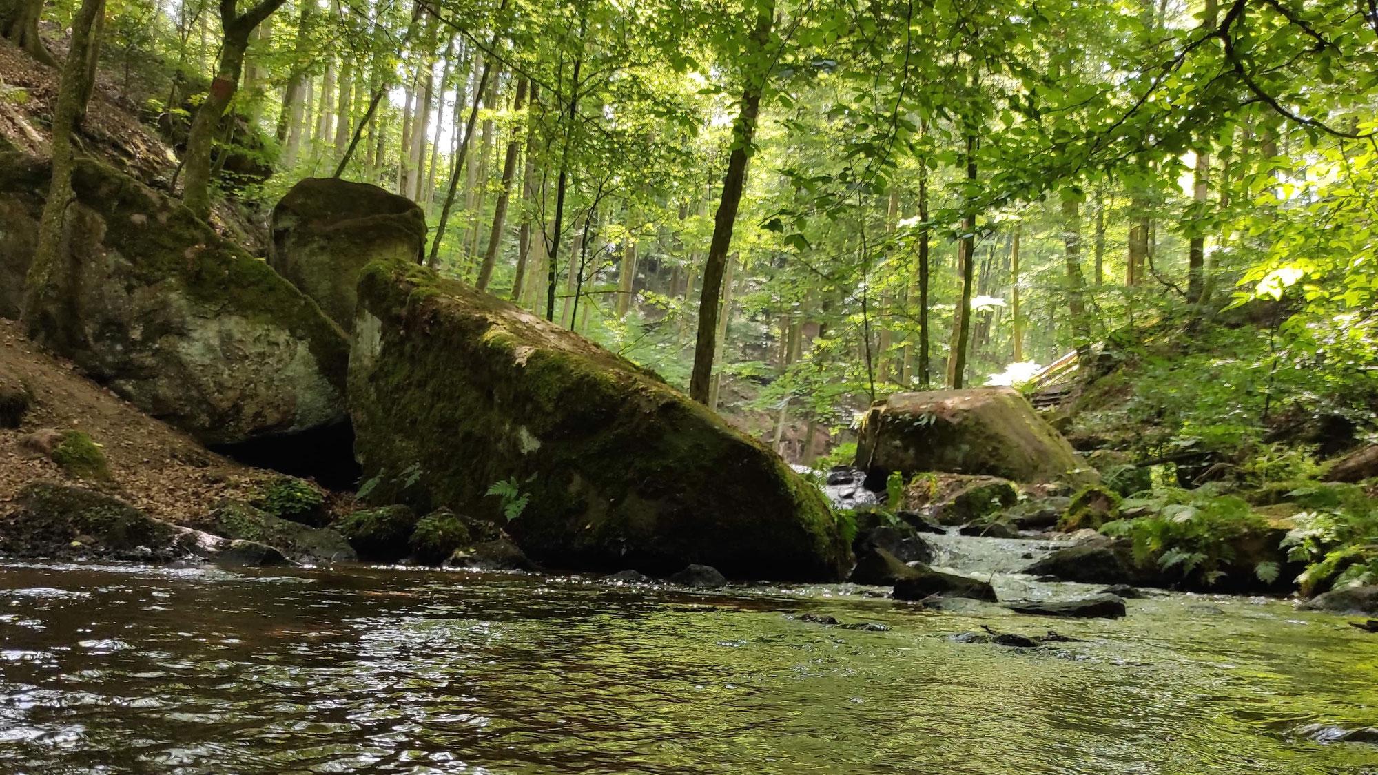 Wasserspaß in der Karlstalschucht