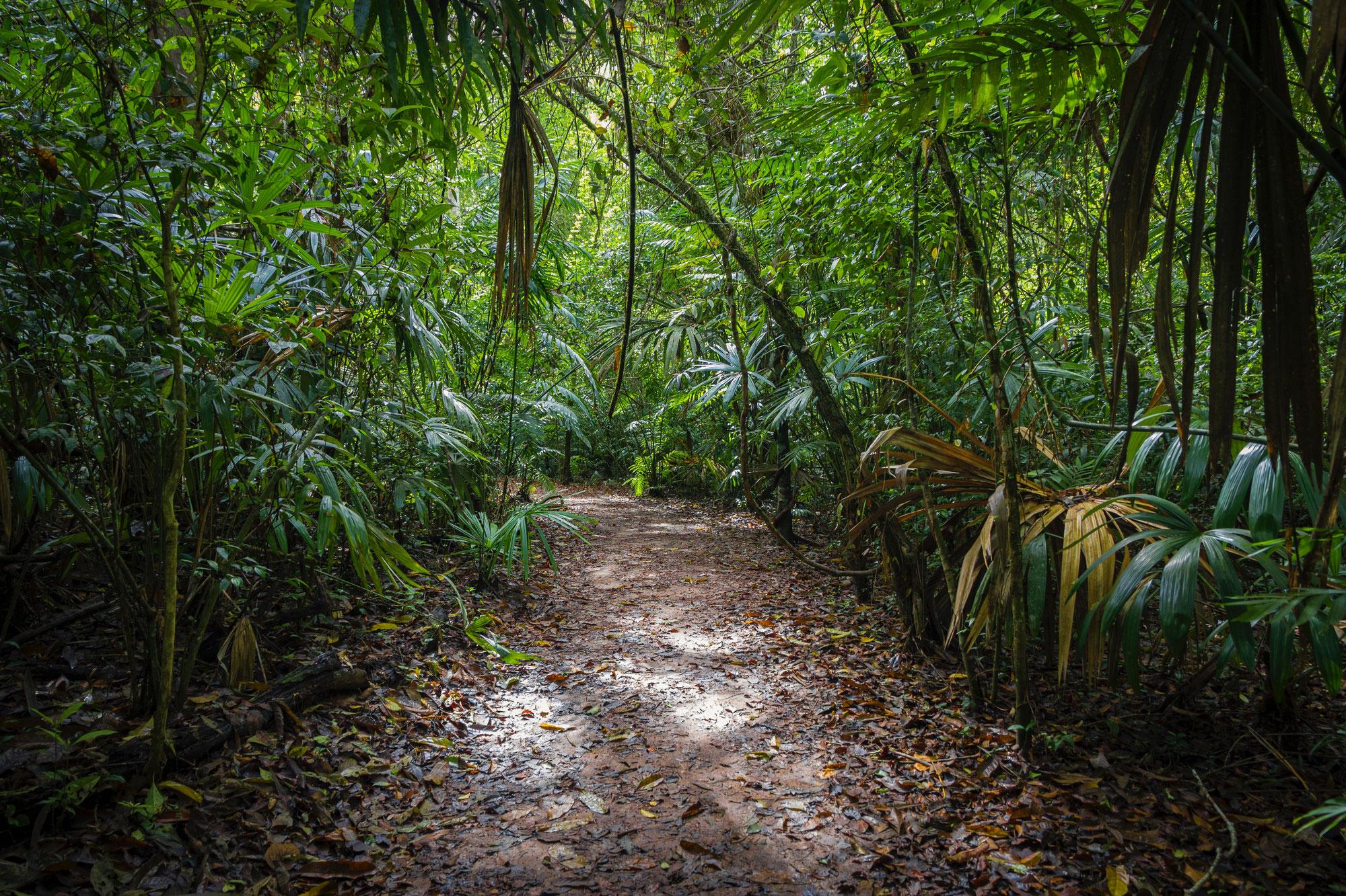Durchblick im Jobbörsen-Dschungel