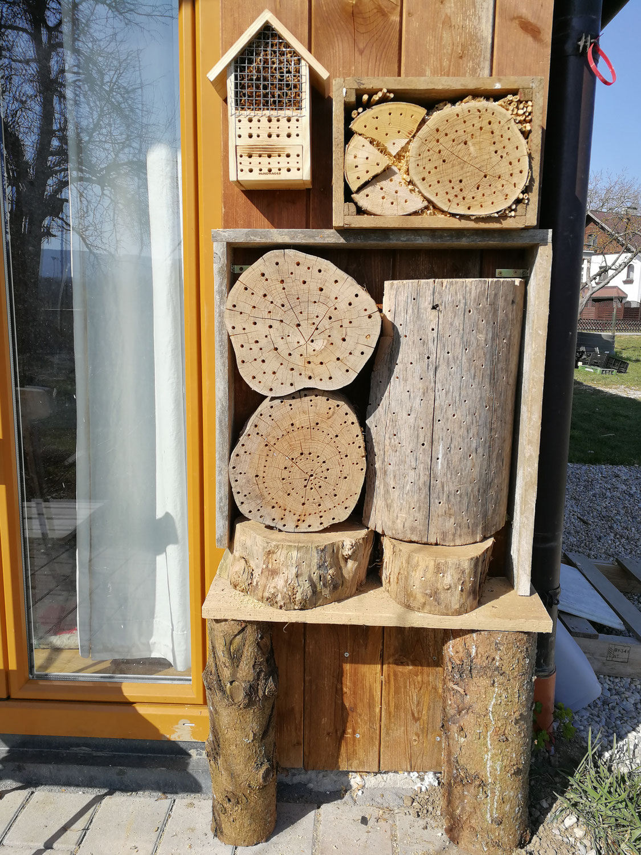 Kommt liebe Wildbienen kommt!