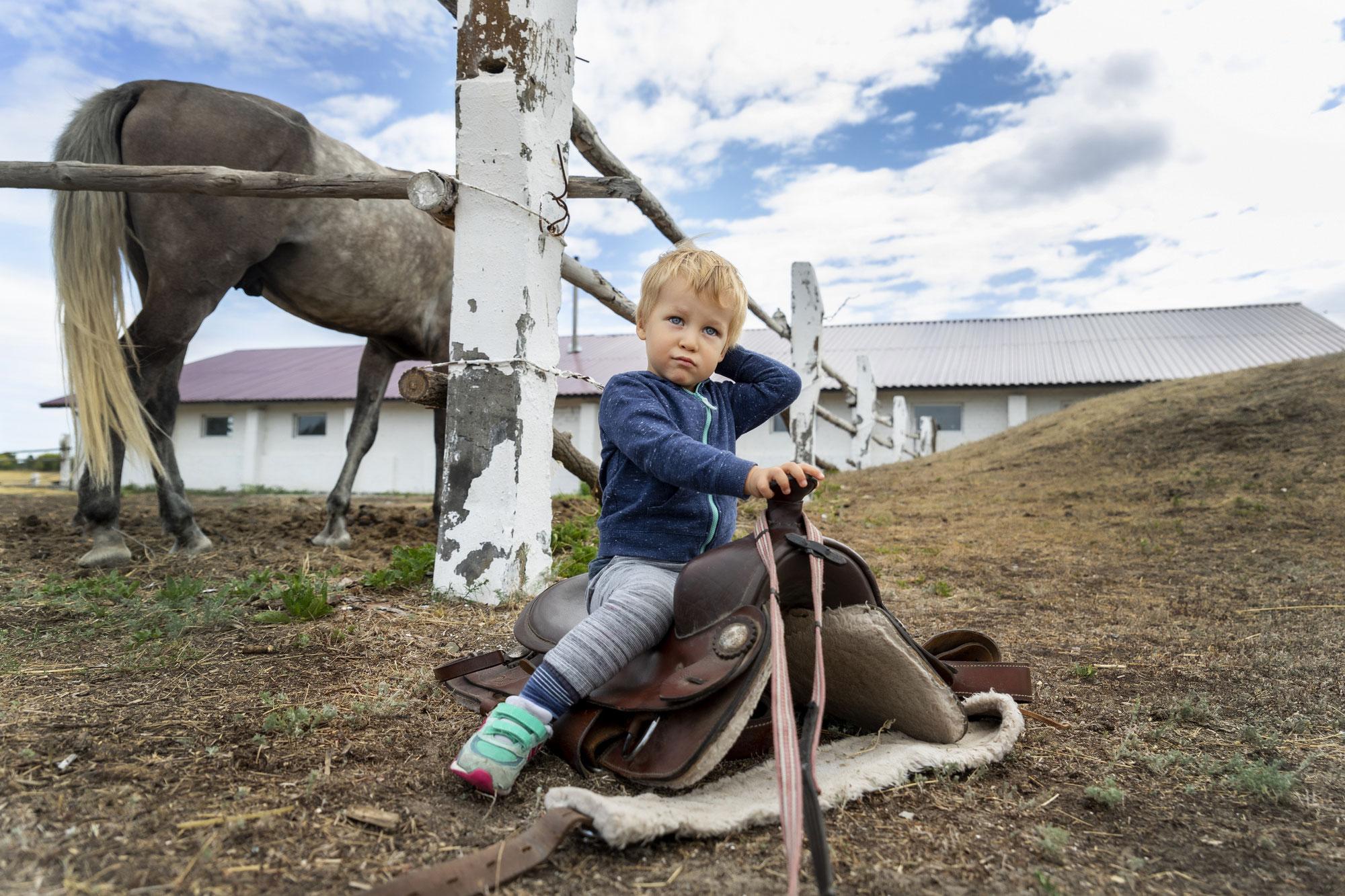 """Wieviel """"Muss"""" brauchen wir in unserem Leben mit Pferden?"""