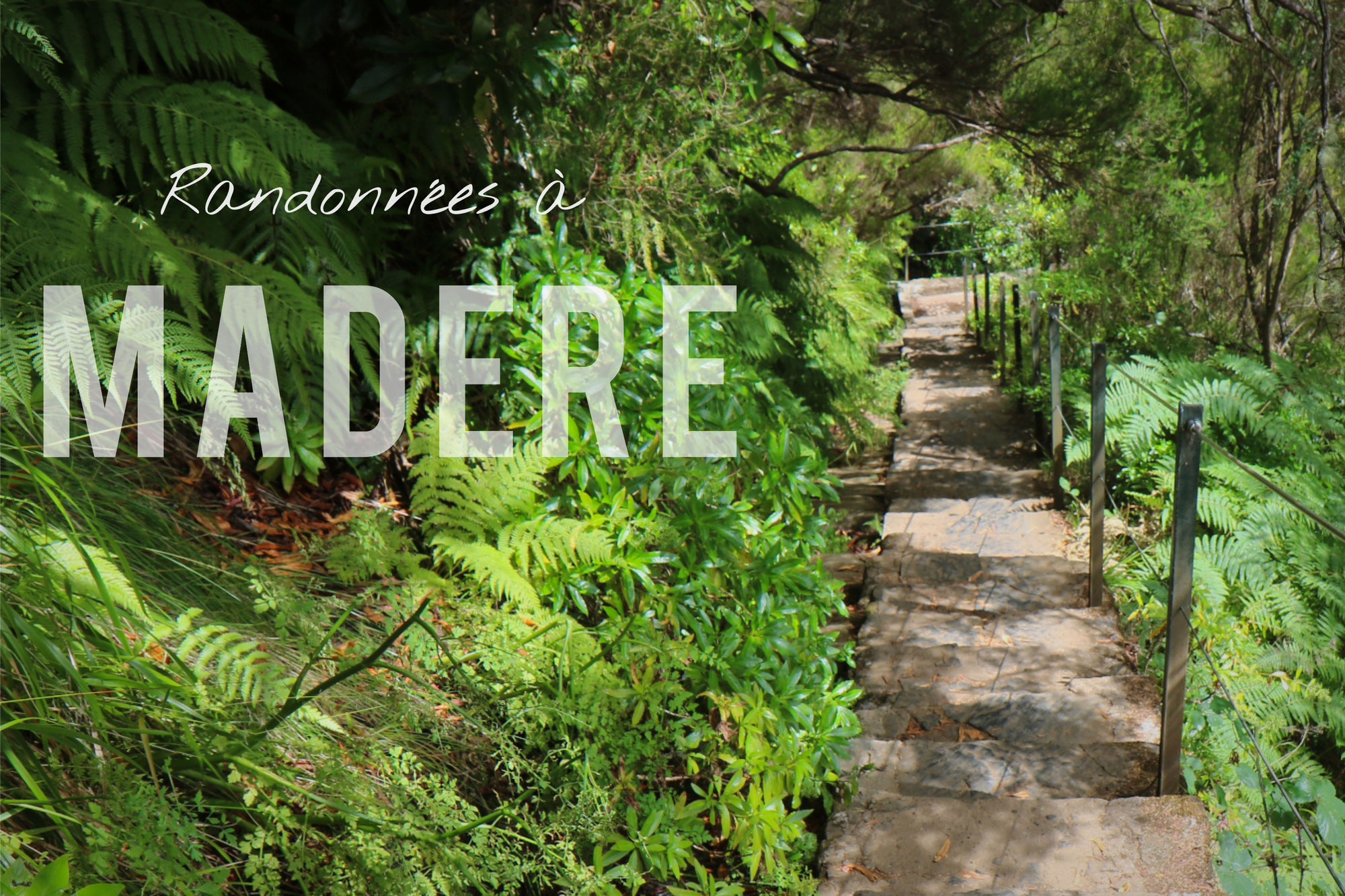 Randonnées à Madère