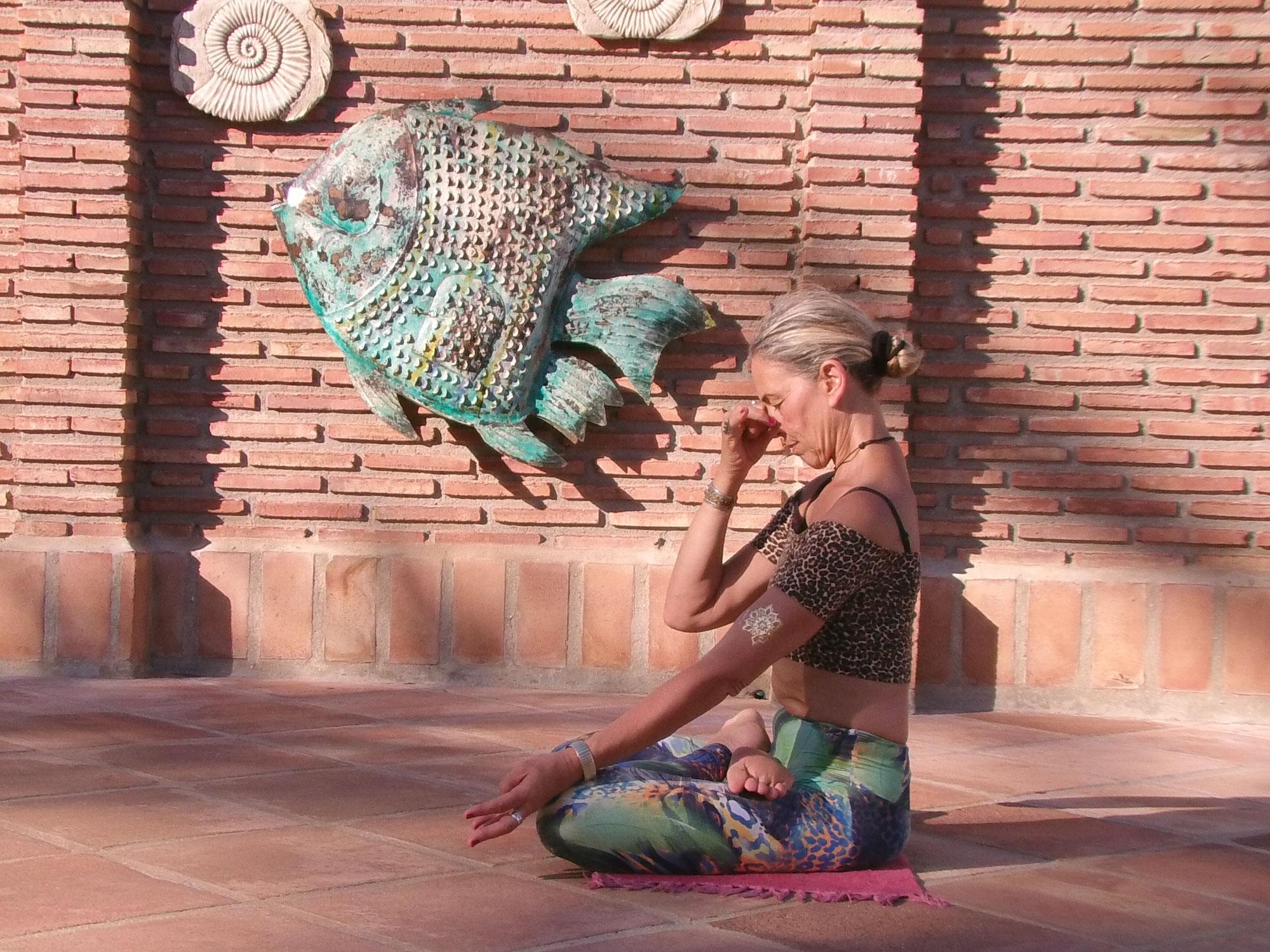 ASHTANGA VINYASA YOGA, VINYASA KRAMA and the Sri T. Krishnamacharya Tradition -BLOGpost 8 - Excursion on fast Pranayamas - Bastri and Kapalabhati