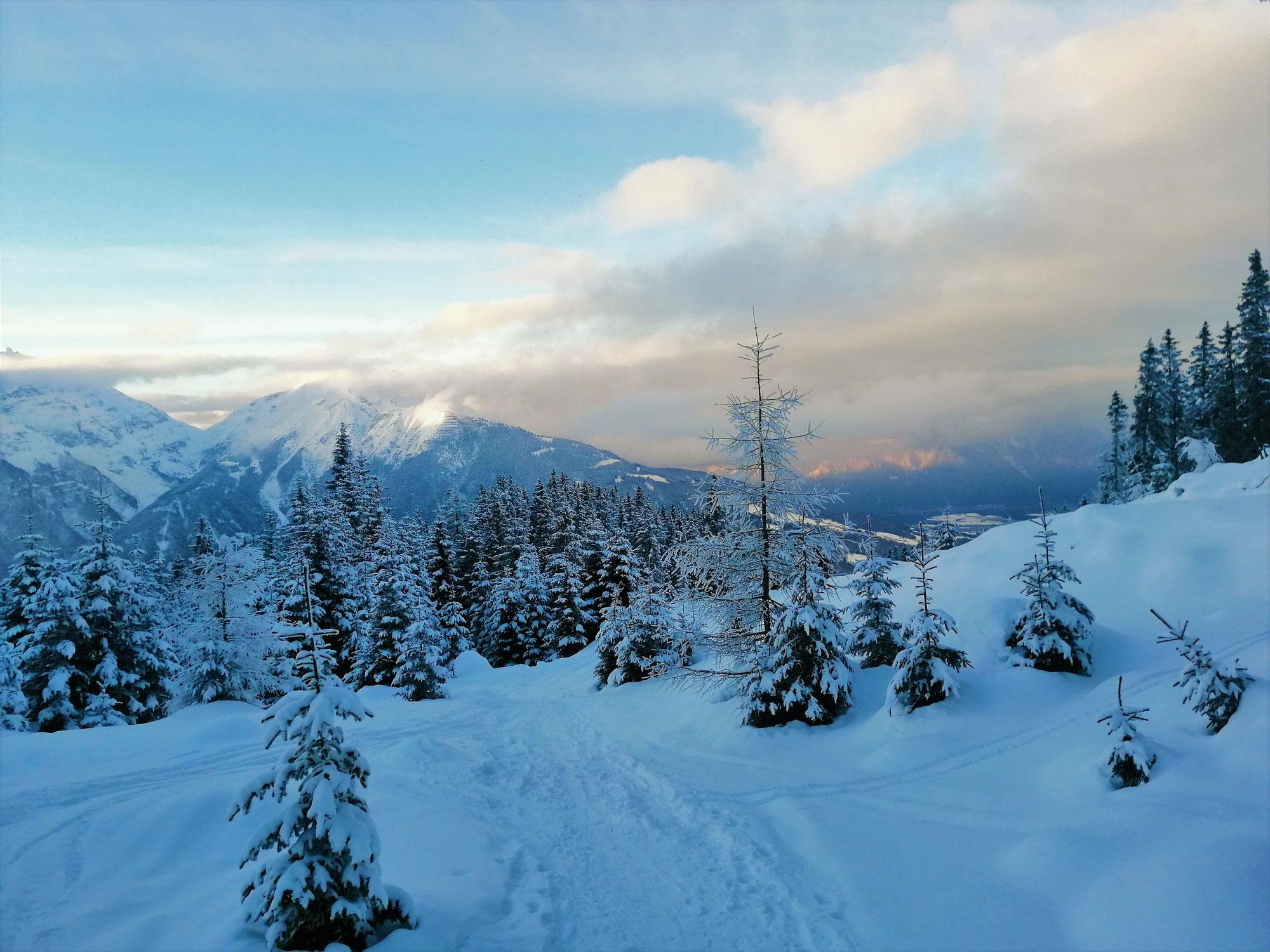 #744 Skitour Waldraster Jöchl