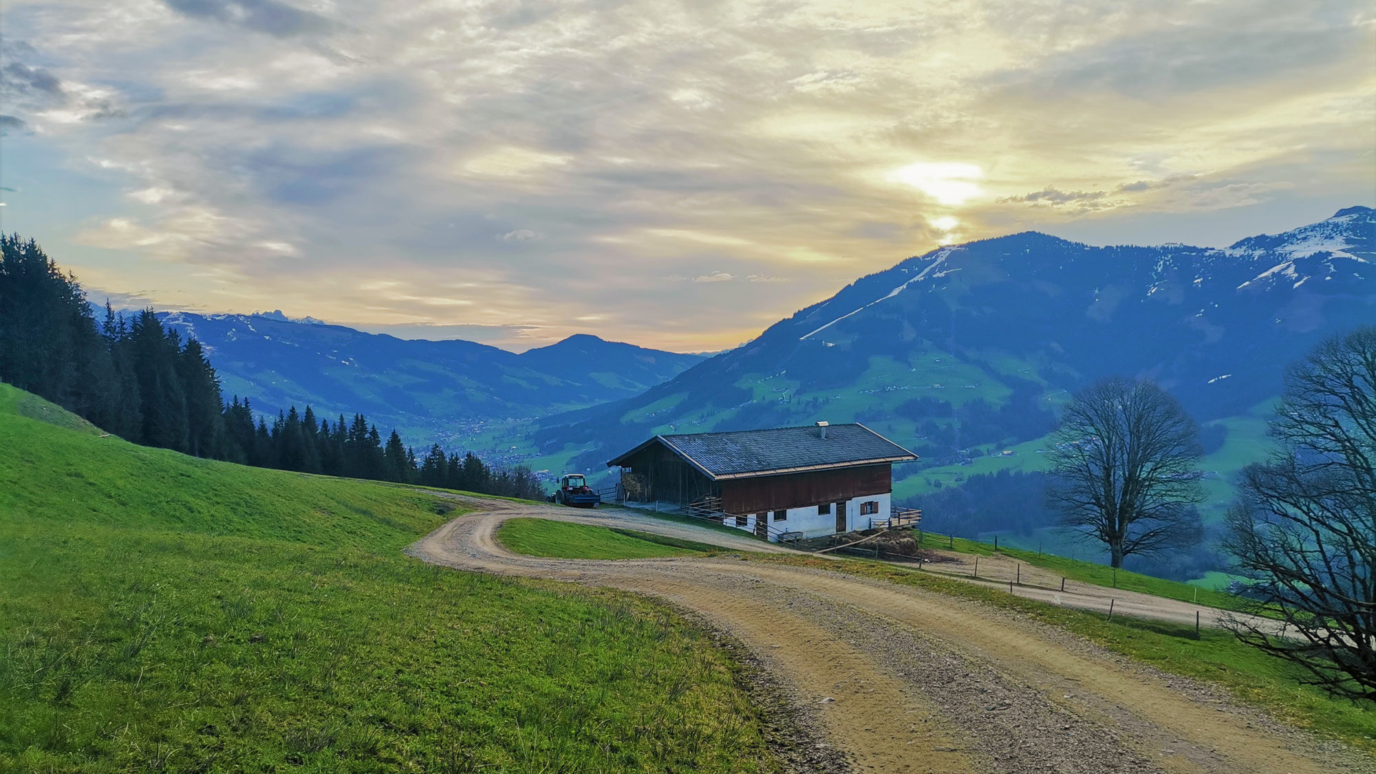 #812 Mountainbike-Tour Glanterer Kogel