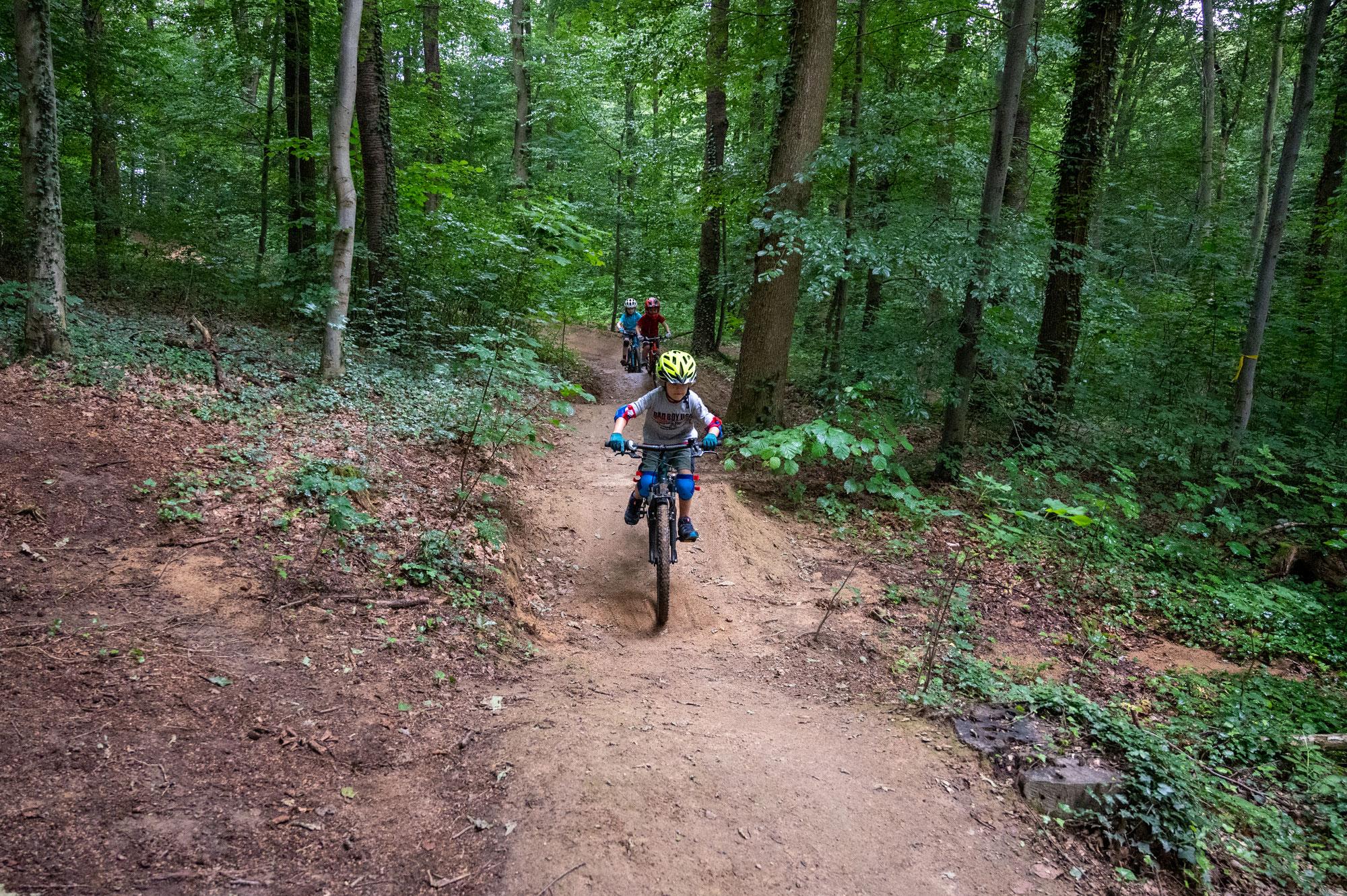 Mountainbiken mit Kindern in Freiburg